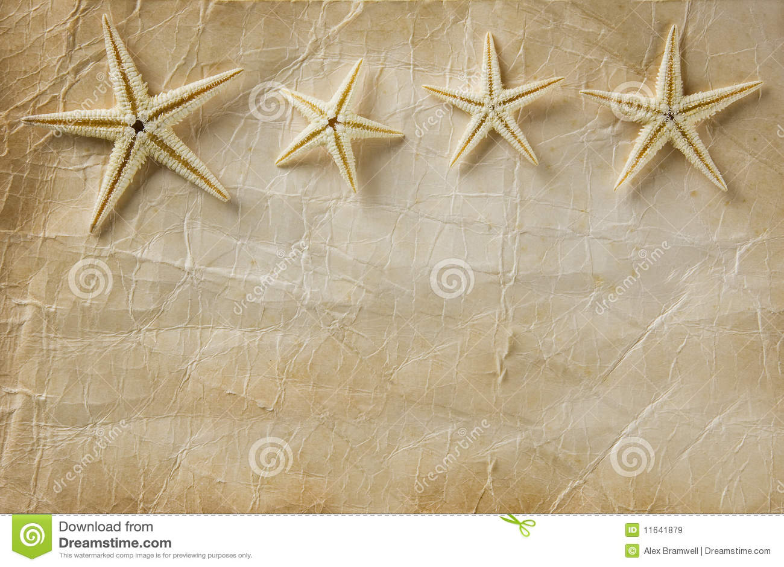 Essay on starfish