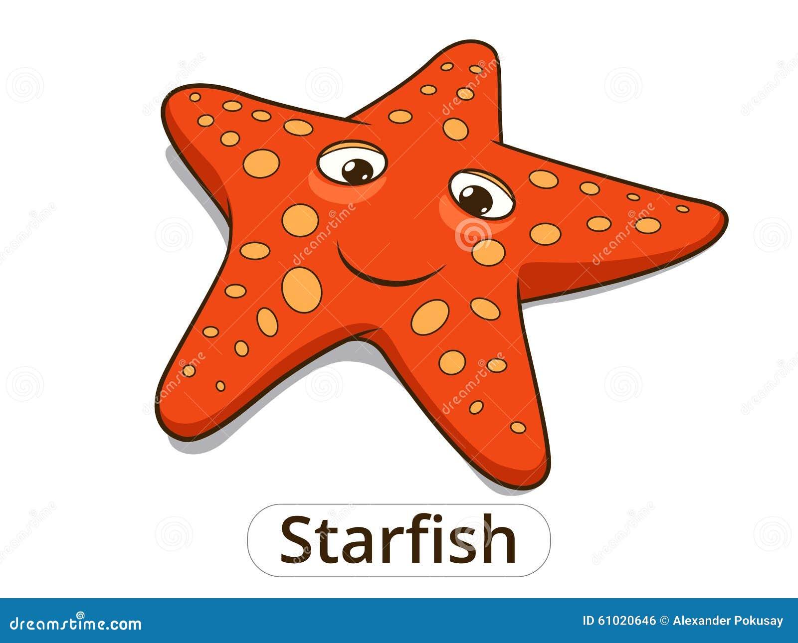 starfish sea fish cartoon illustration stock vector image 61020646
