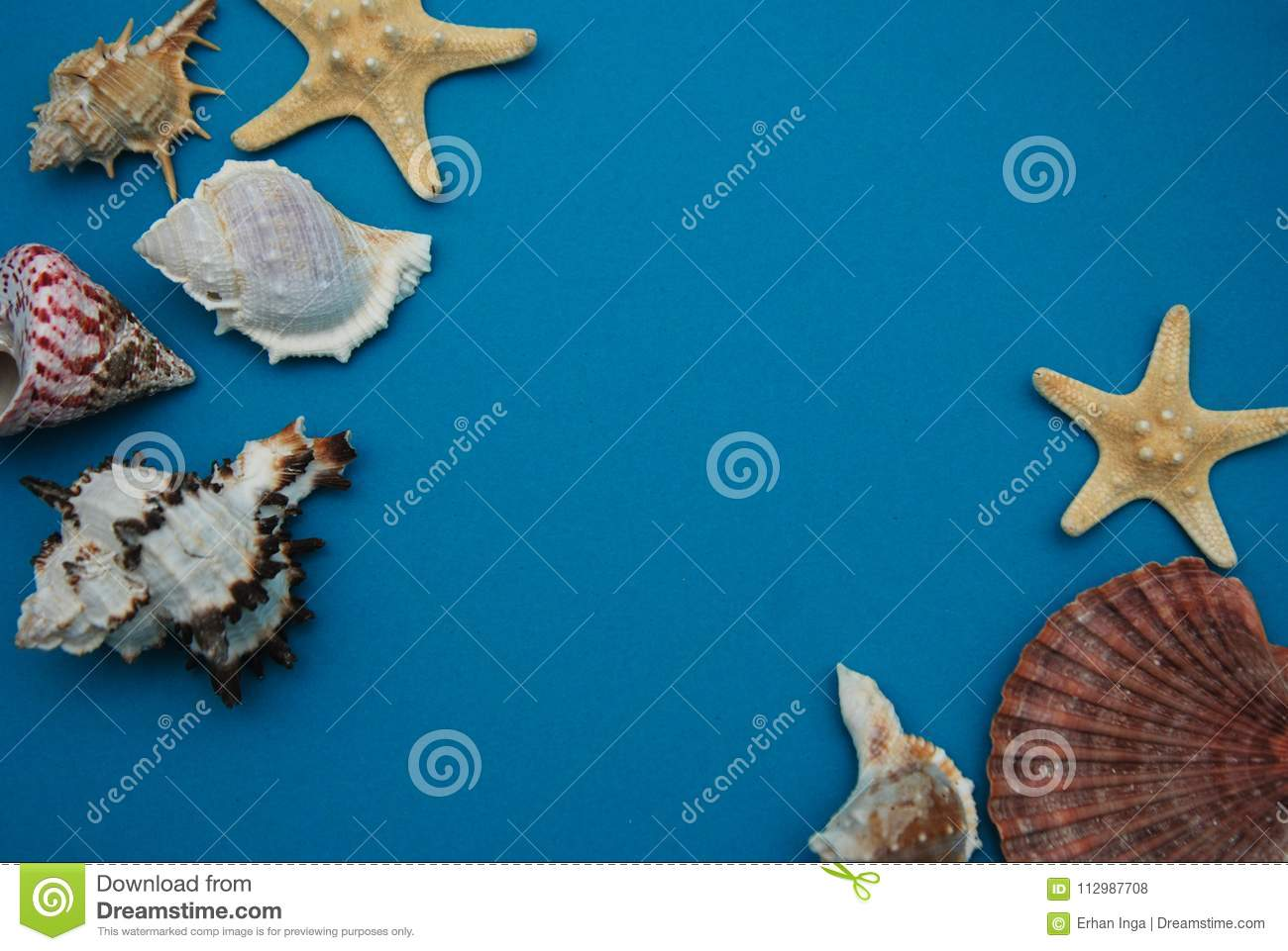 Starfish, Shell, Stones, Rope and Net Against a Blue Background with Copy Space. Summer Holliday. Nautical, Marrine concept.