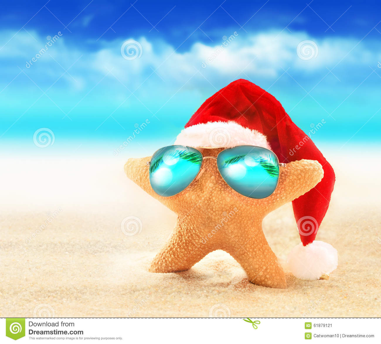 Starfish in sunglasses on summer beach and santa hat for Christmas fish starters