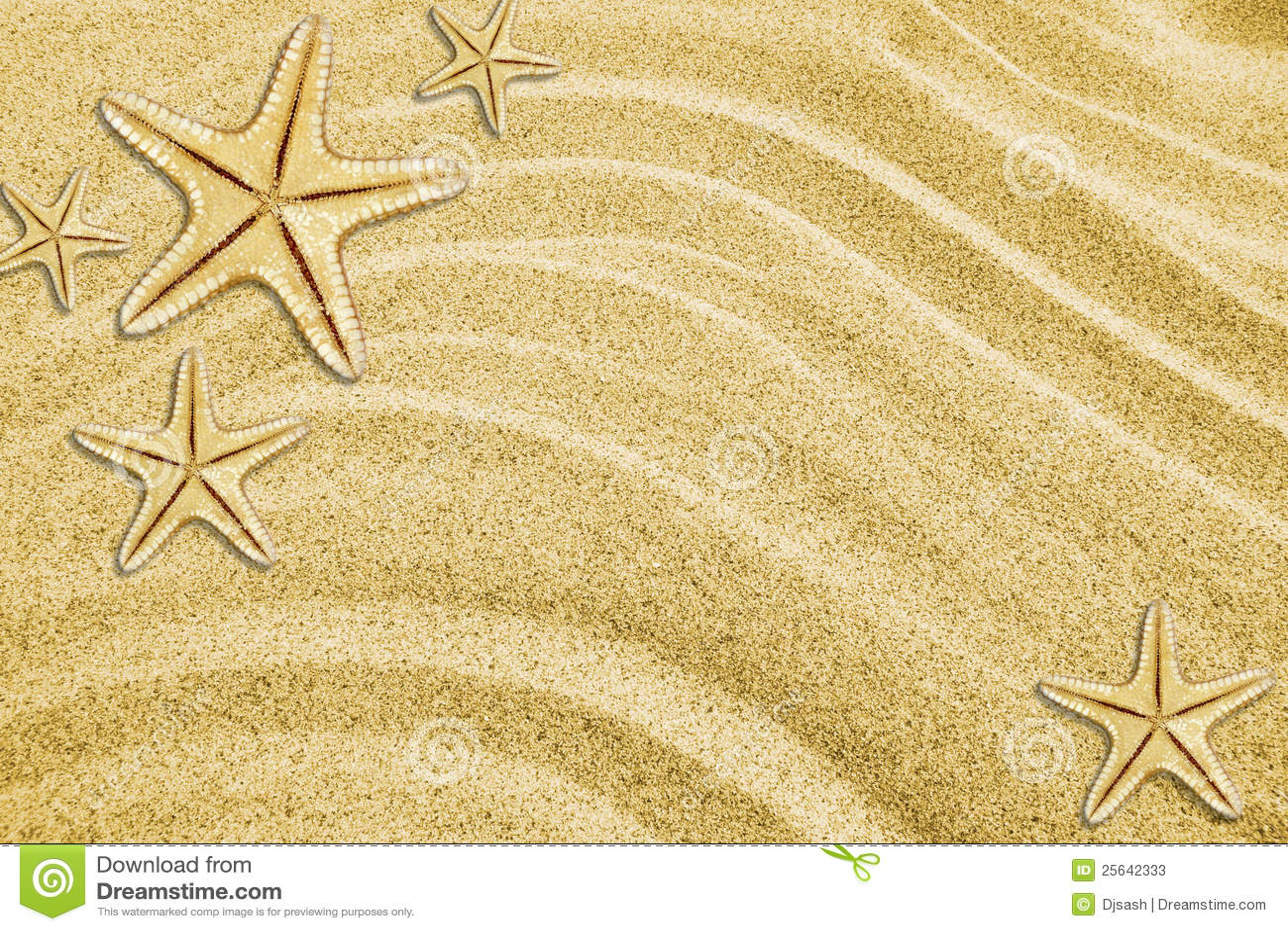Starfishes on beach sand