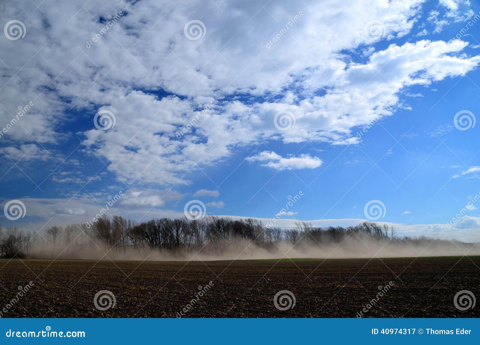 Stark sandstorm