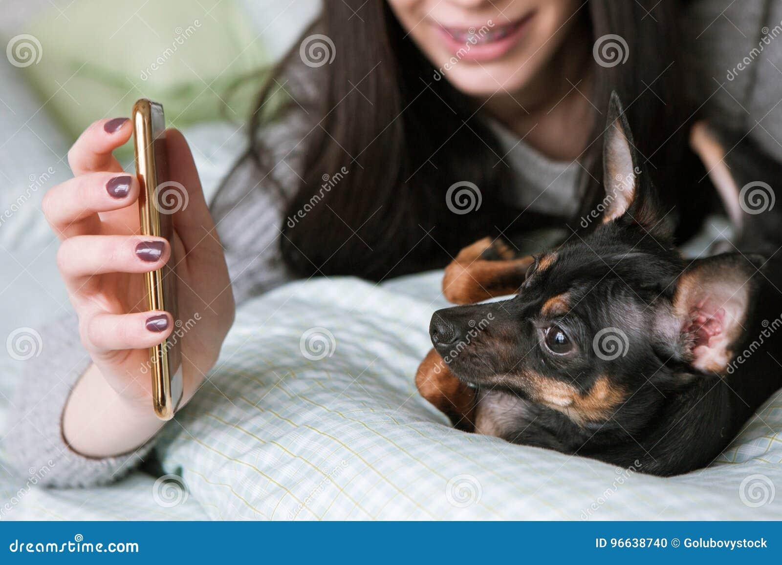 Starke Freundschaft mit kleinem Hund