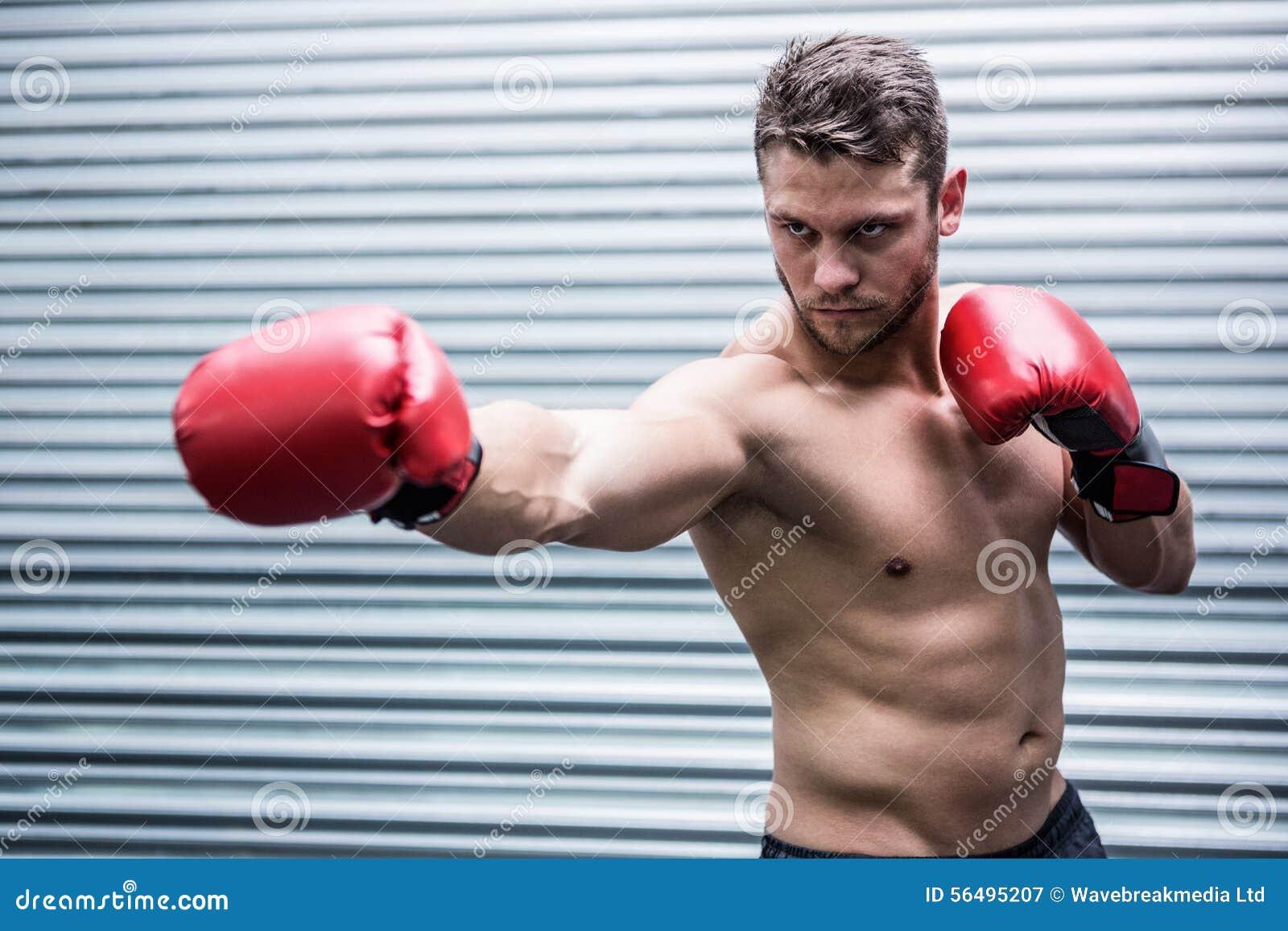 Starker muskulöser Boxer