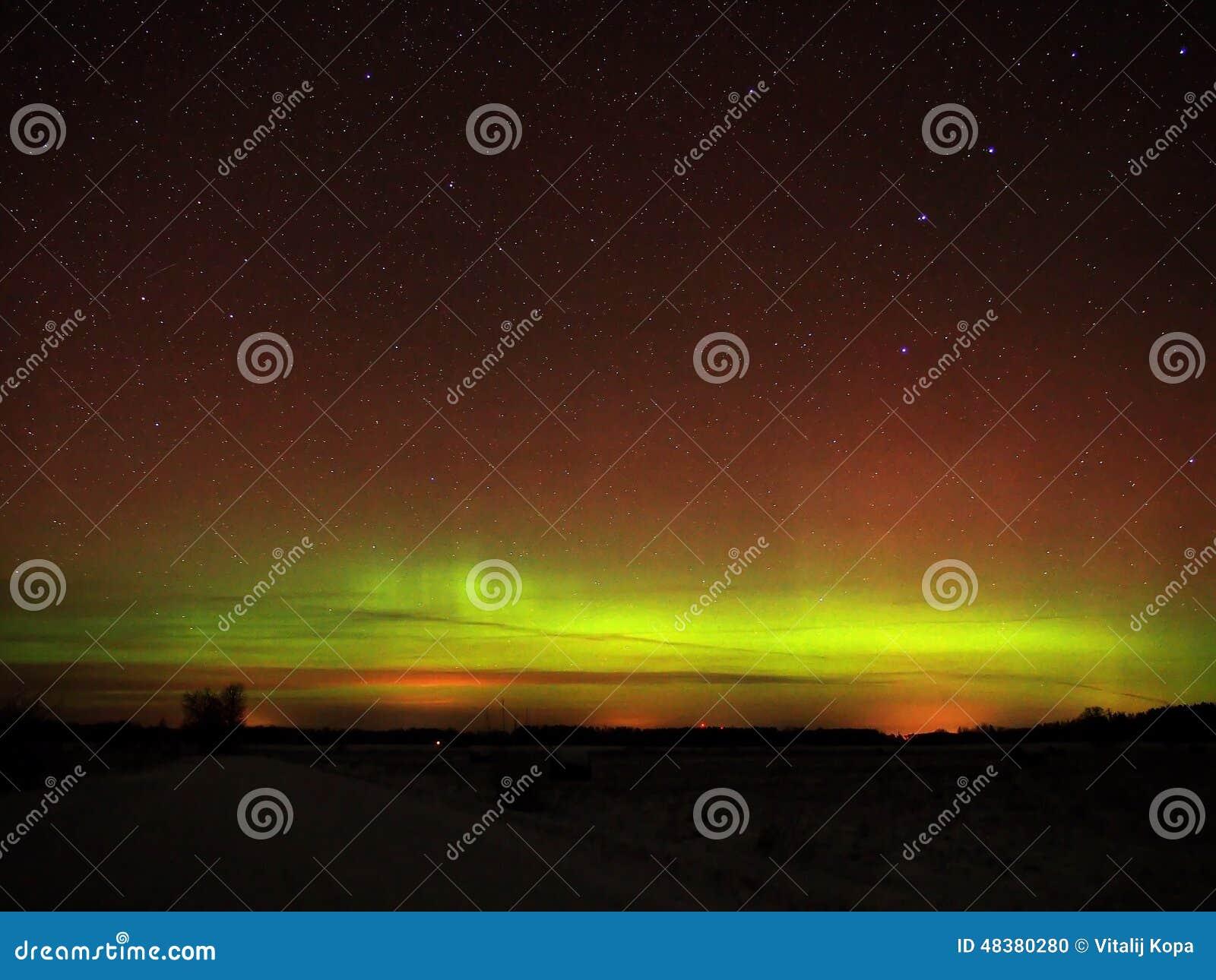 Aurora borealis polar lights and night sky stars over forest