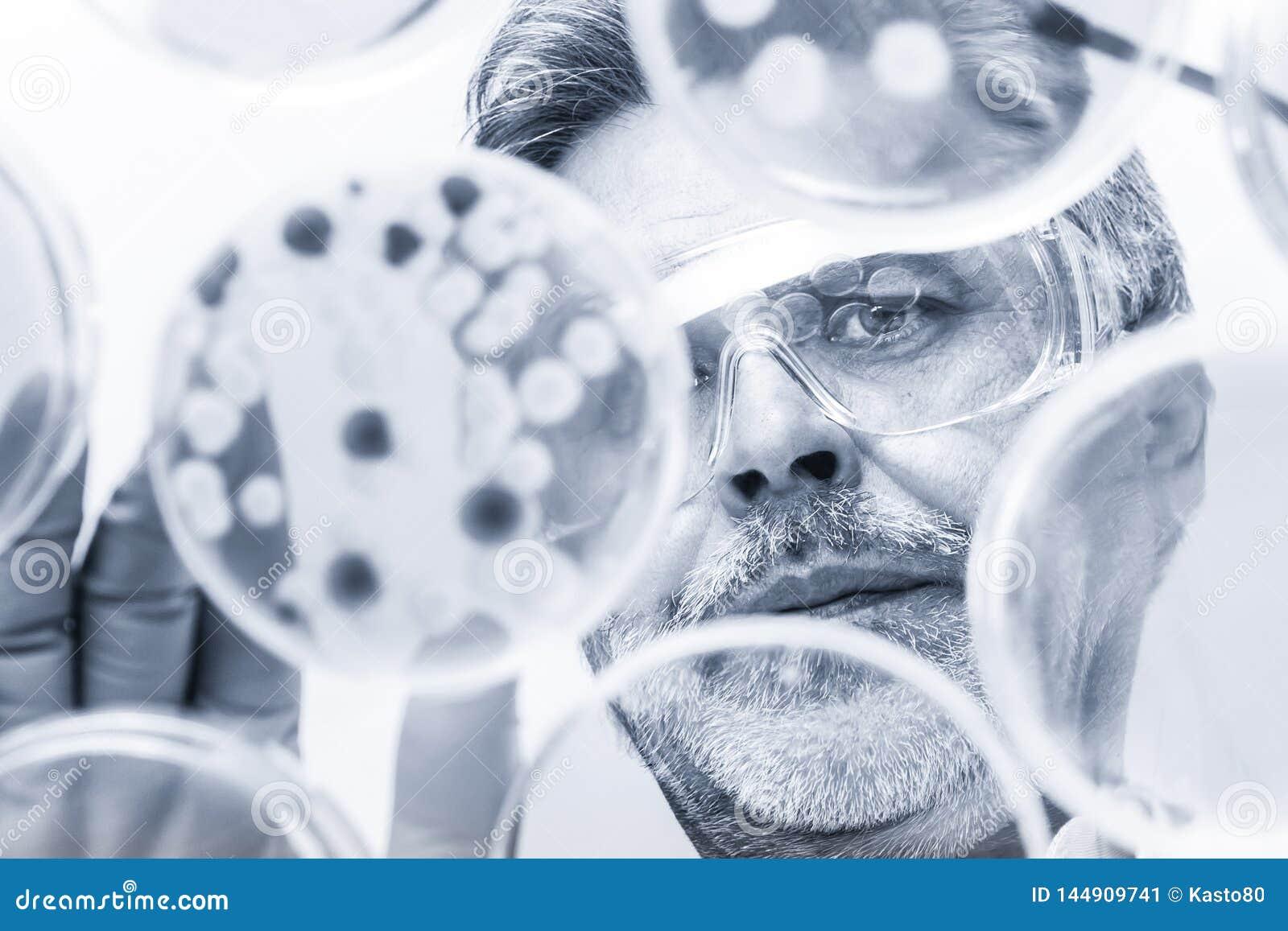 Starsze nauki przyrodnicze badacza kopulizaci bakterie