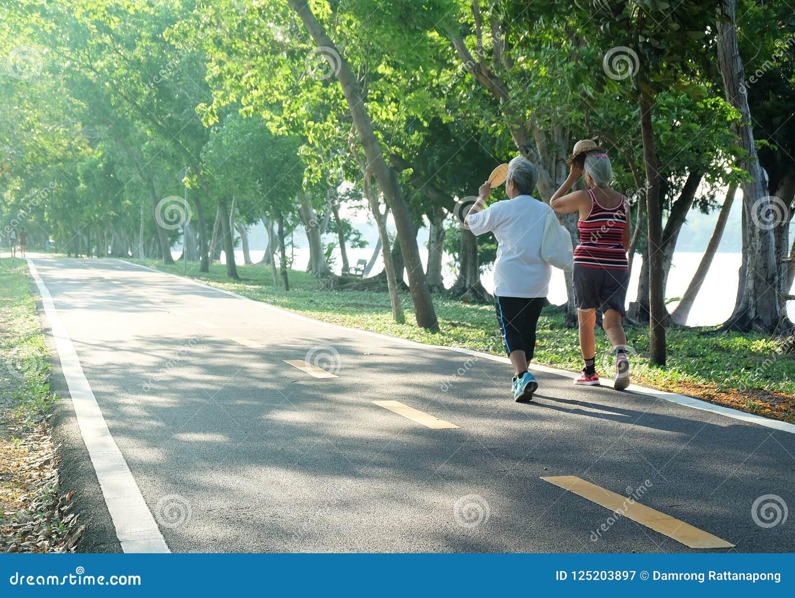 Starszej osoby pary kobiety chodzi ćwiczenie przy parkiem w popołudnia świetle
