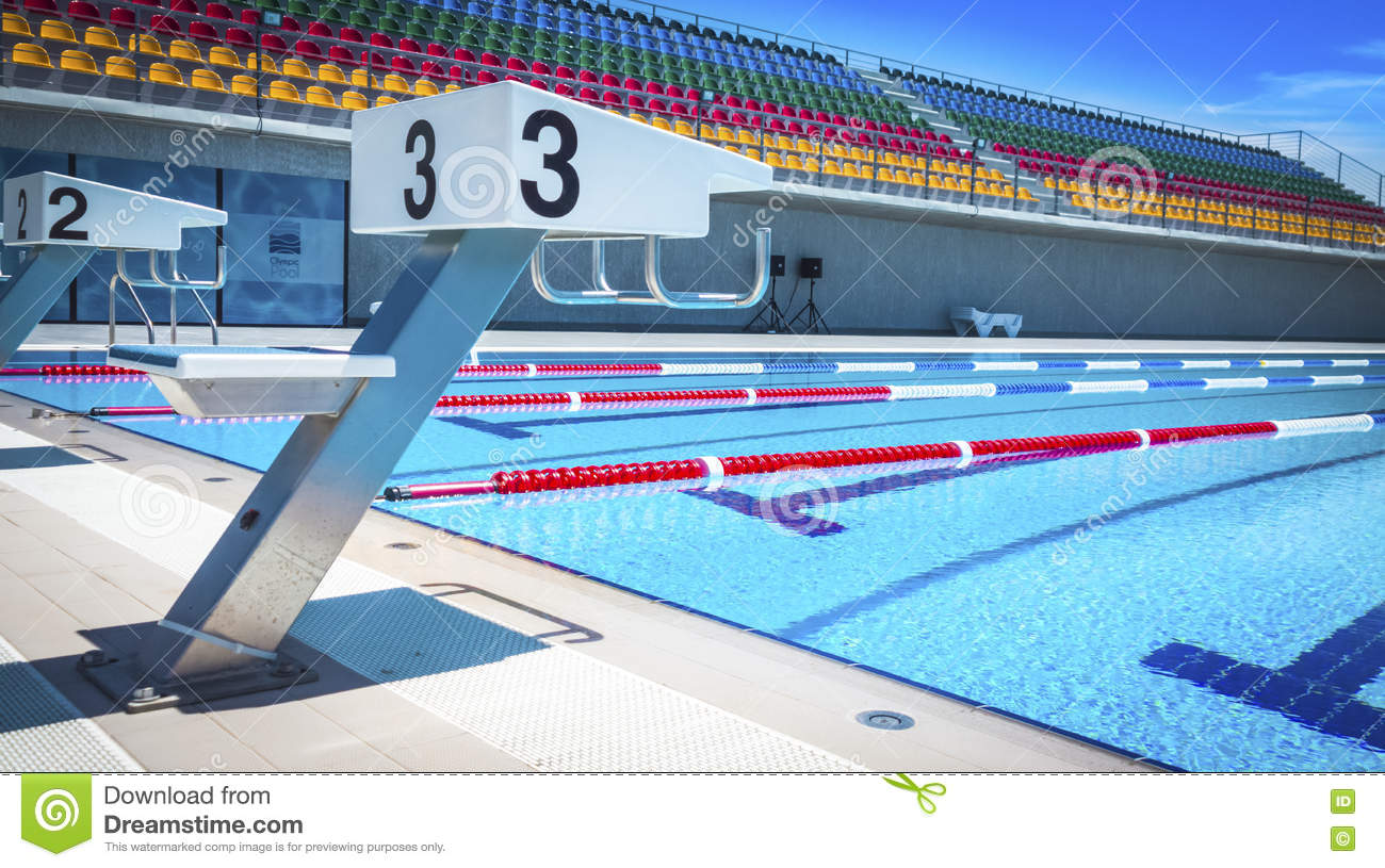 Start Positions In Competition Swimming Pool Stock Photo Image Of Board Beginnings 77310352