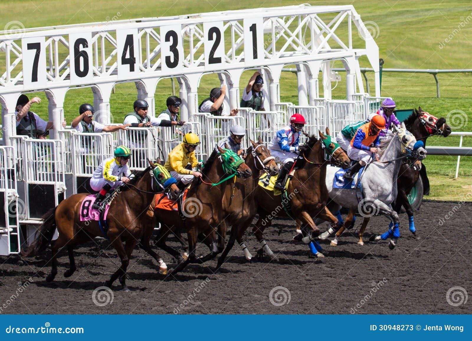 horse racing gates