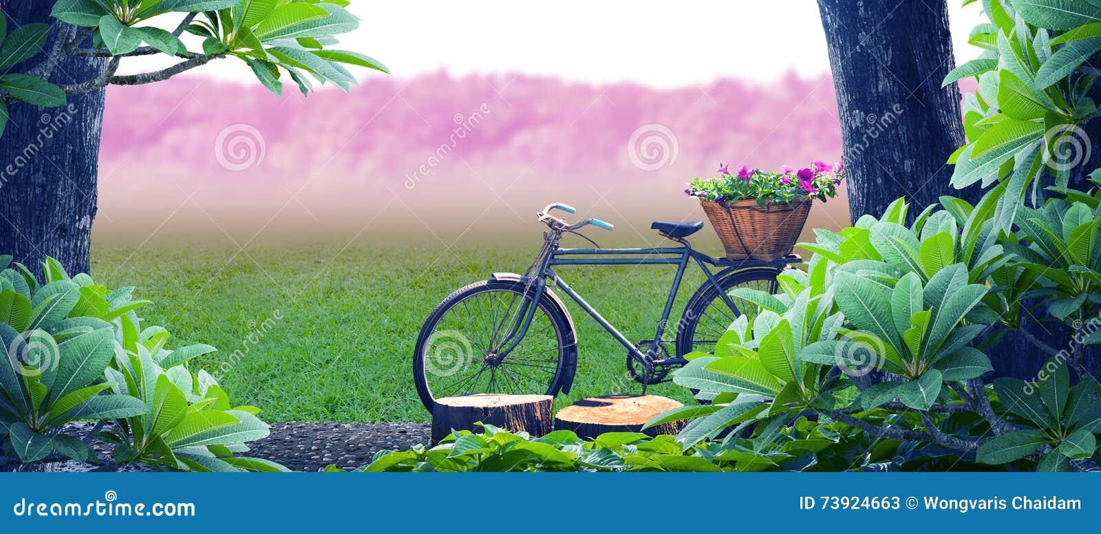 Stary bicyklu park