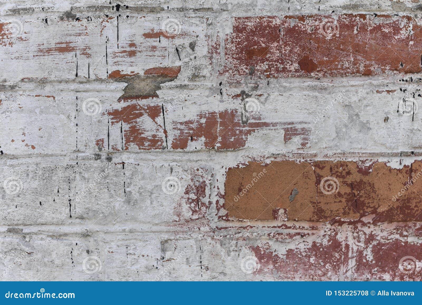 Stary biel z grubsza tworzył ściana z cegieł malującego białego tynk, zakończenie w górę, kopii przestrzeń