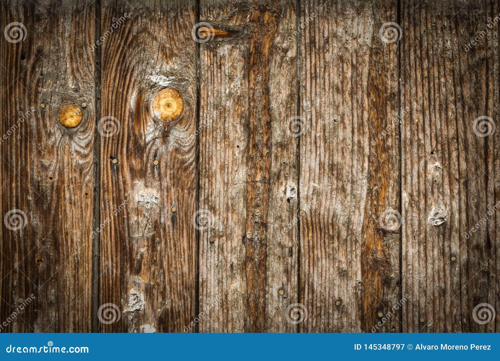 Stary drewniany brawn