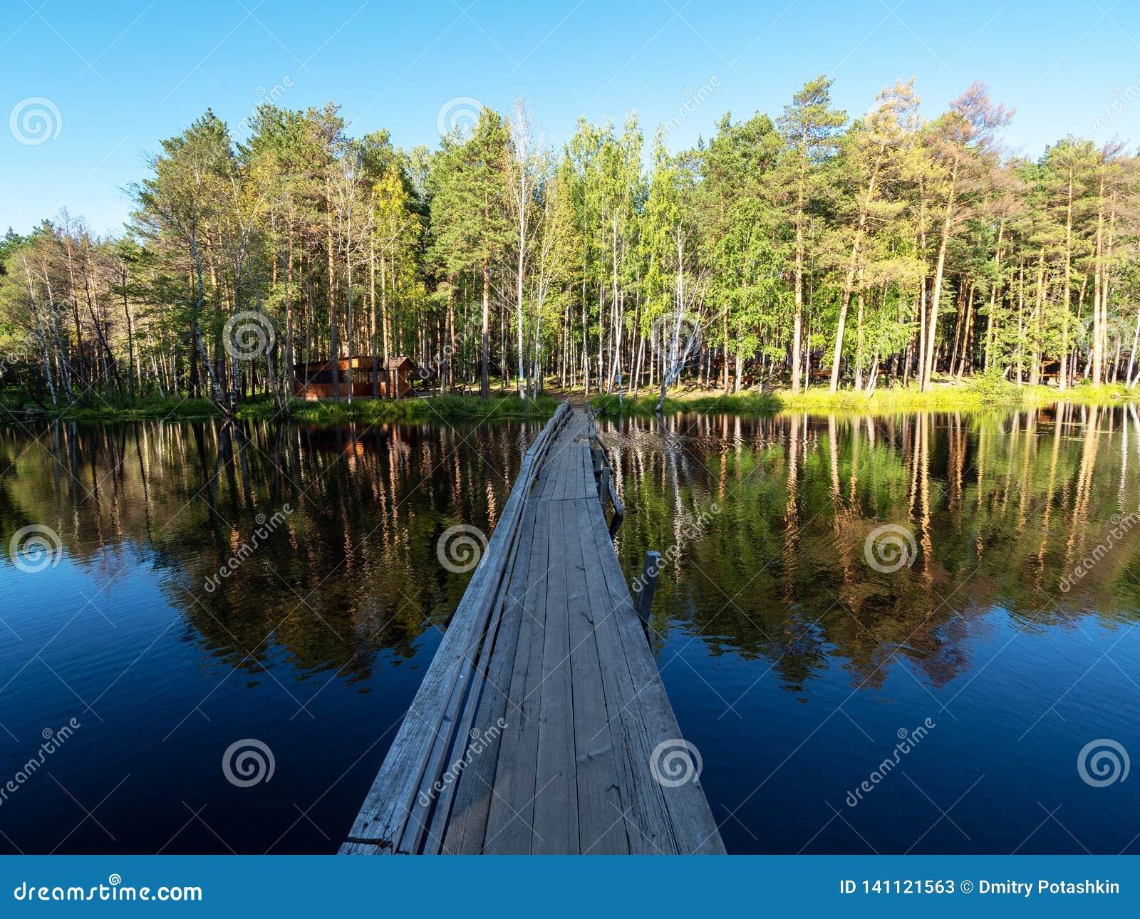Stary drewniany most nad rzeką dla pedestrians Sosnowy las na brzeg
