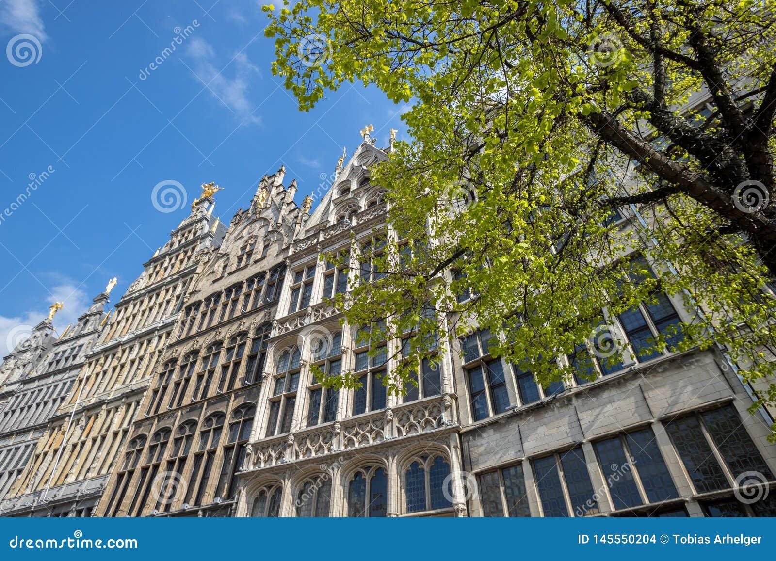Stary grodzki Antwerp Belgium