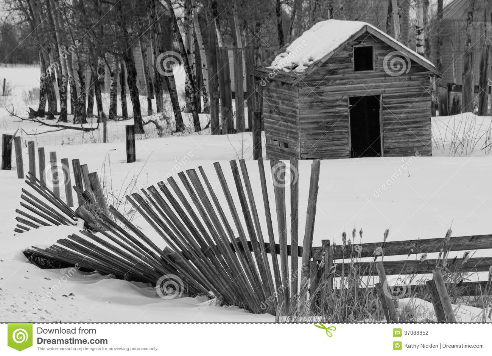 Download Stary Oparty Ogrodzenie W Czarny I Biały Zdjęcie Stock - Obraz złożonej z śnieg, zima: 37088852