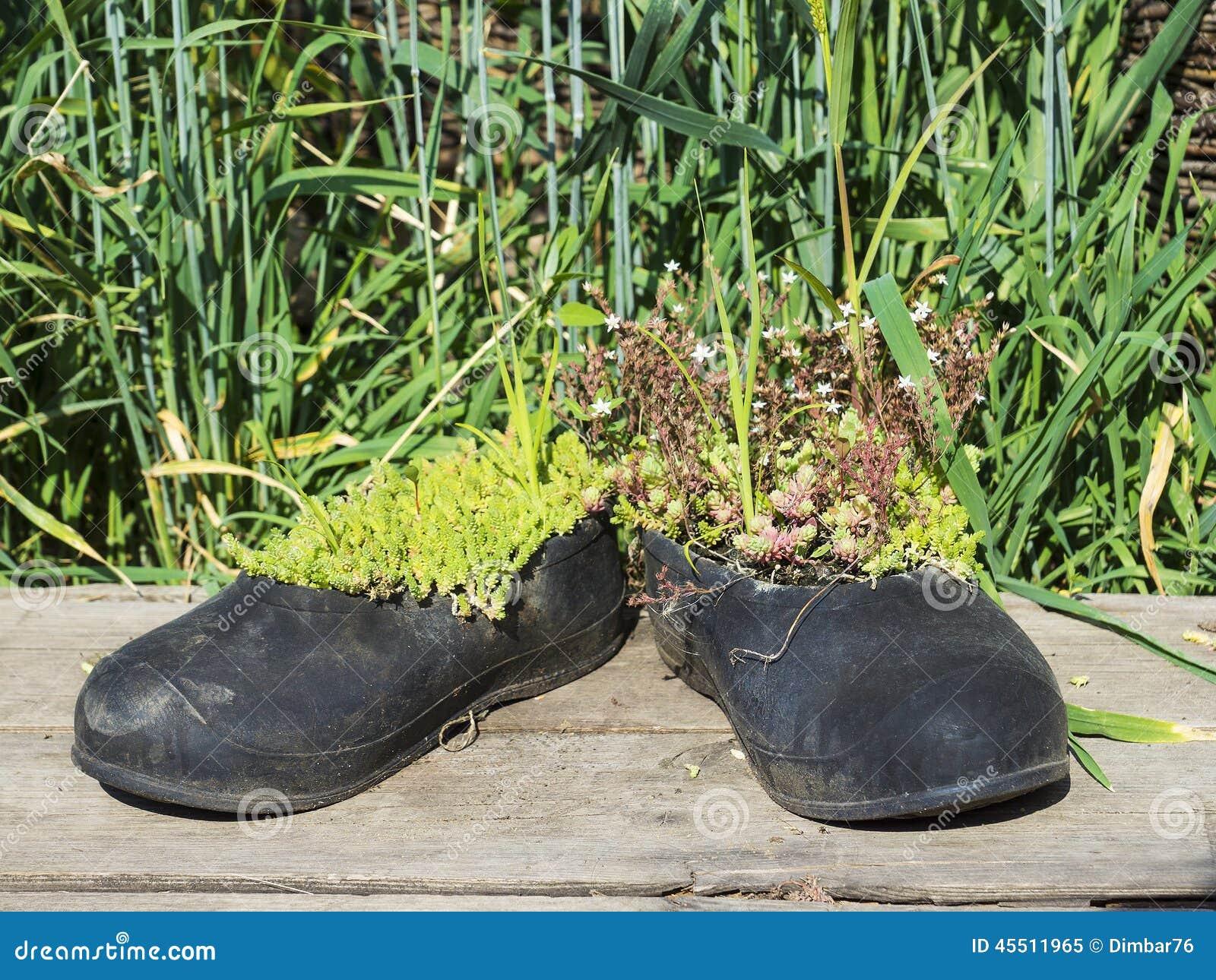Starzy chodzący buty przekształcać w garnki