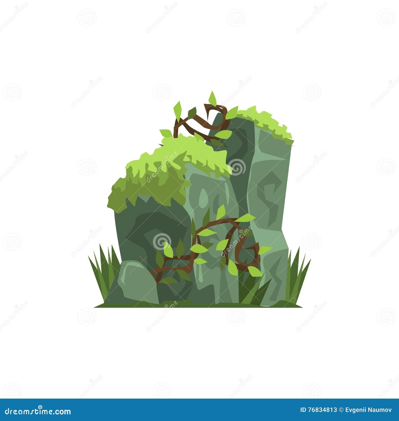 Starzy kamienie Zakrywający W mech dżungli krajobrazu elemencie