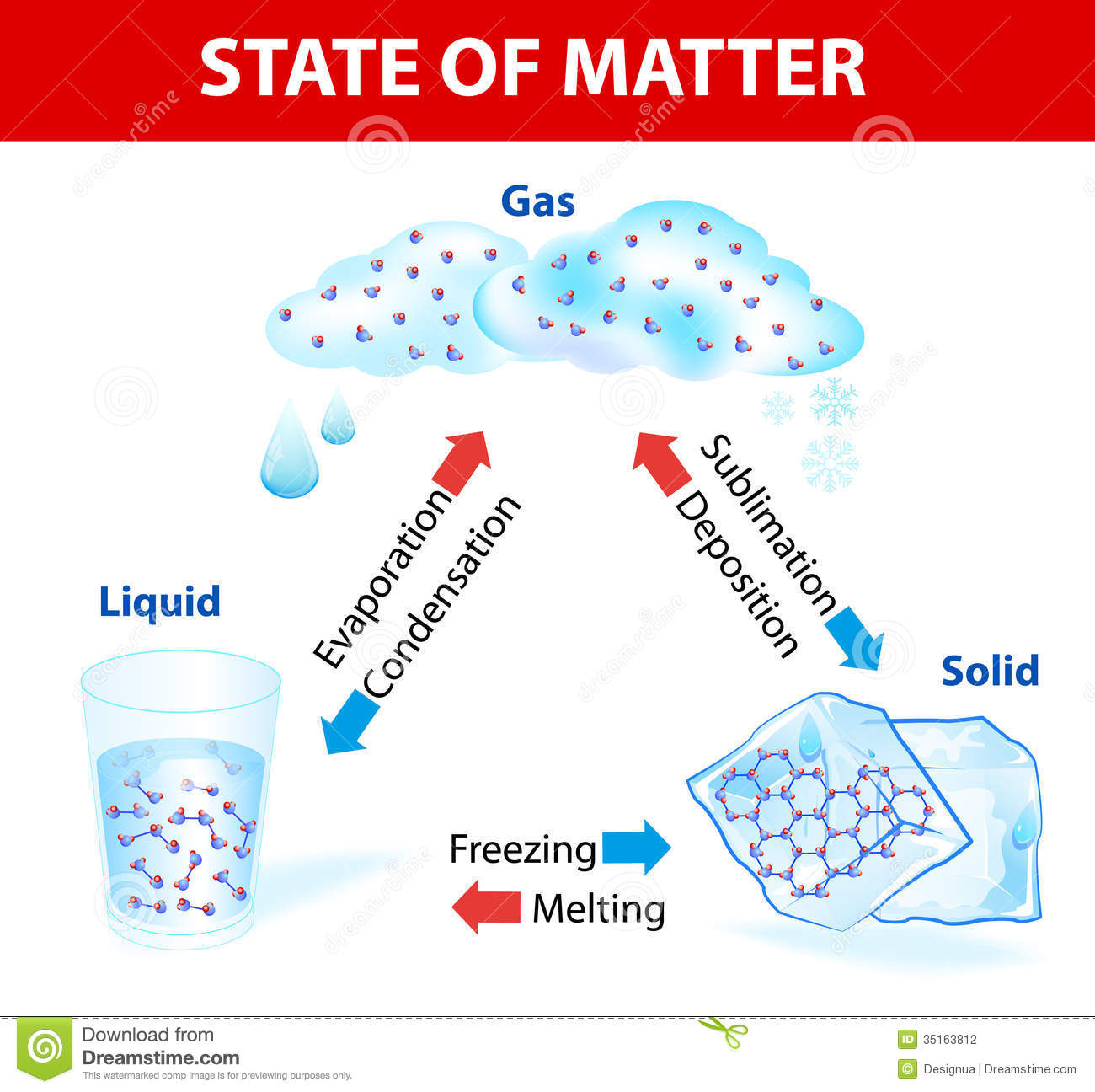 state of matter vector diagram stock vector image 35163812 Conservation of Matter Phases of Matter