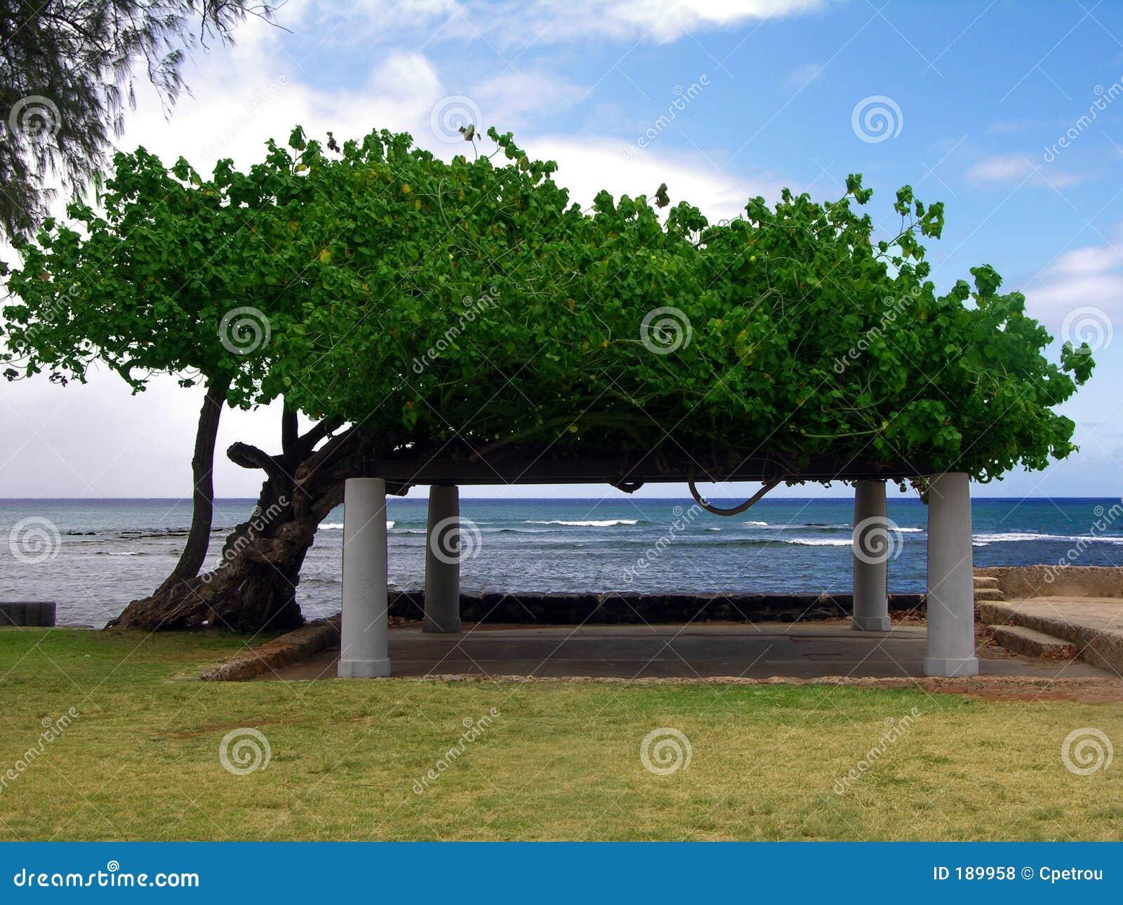 Stationnement de plage de Makalei