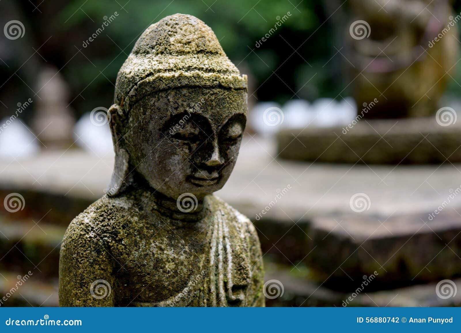 Statua di pietra di Buddha con la fine del muschio su