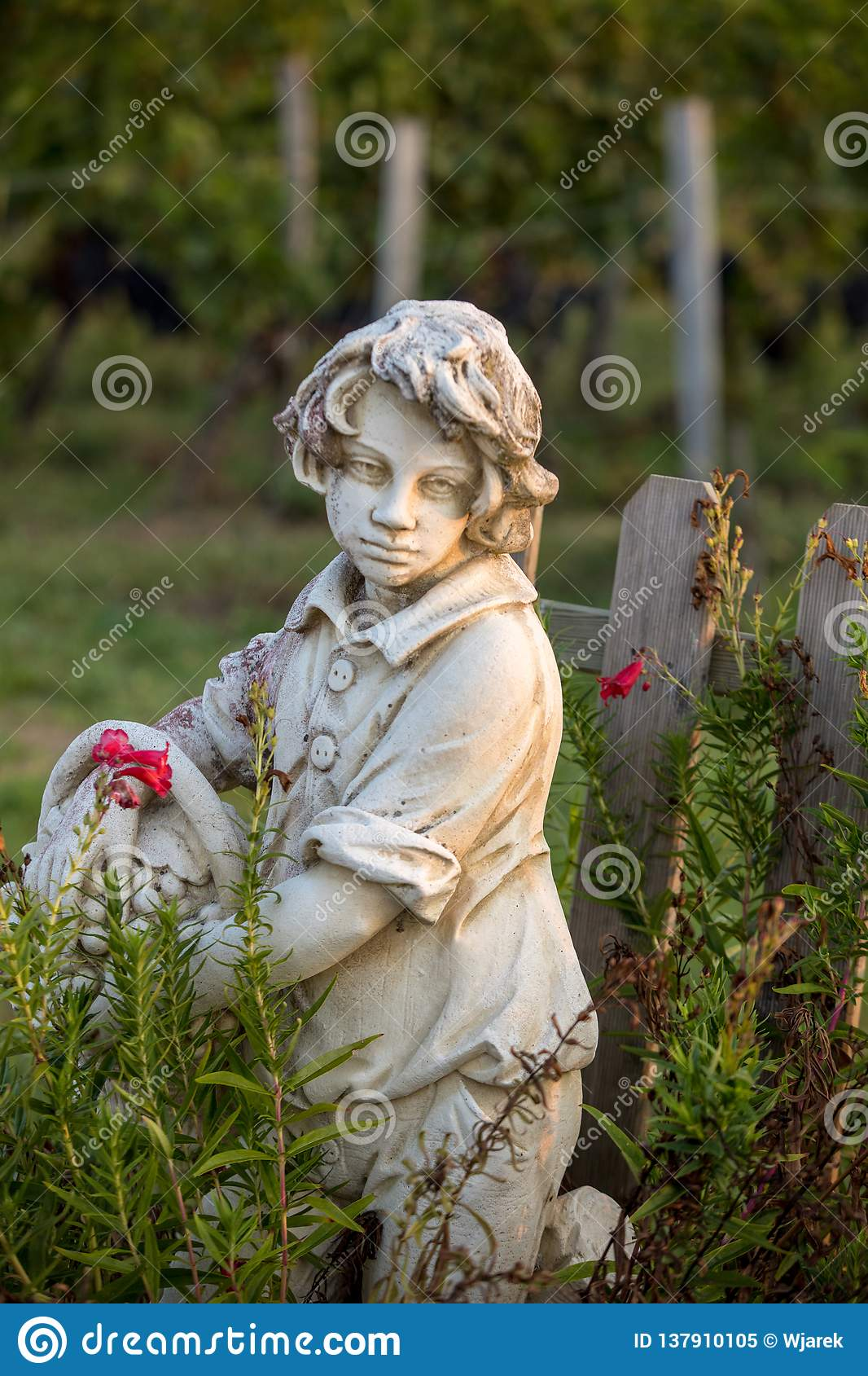 Statue of a boy holding a basket with grapes on the background of vineyards in the Saint Emilion region