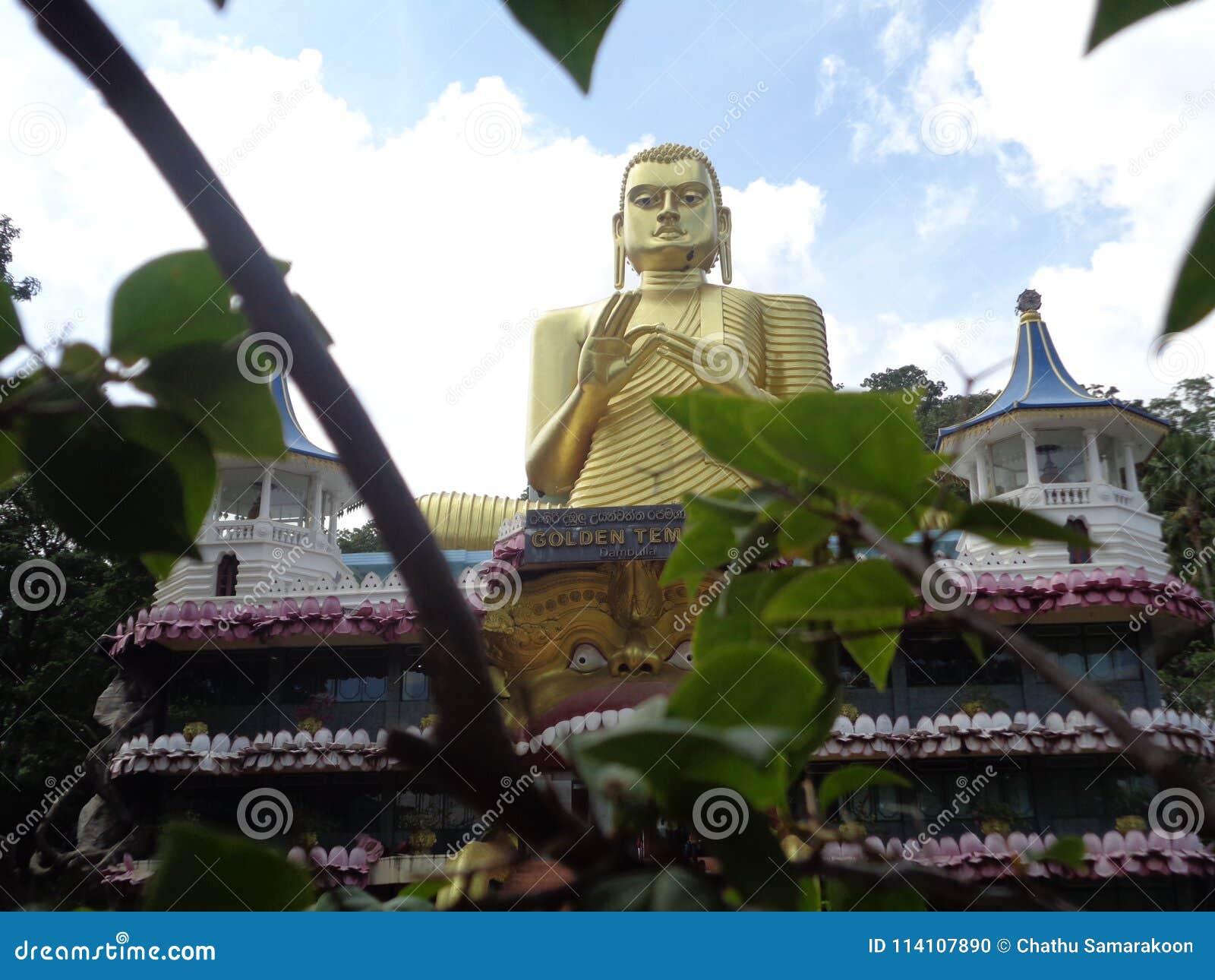 Statue of buddha dambulla in Sri Lanka