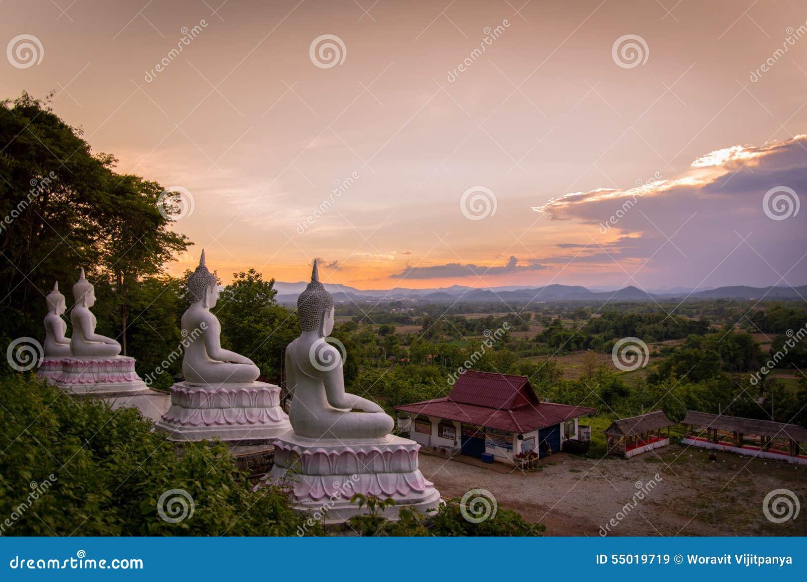 Statue de Bouddha de vue