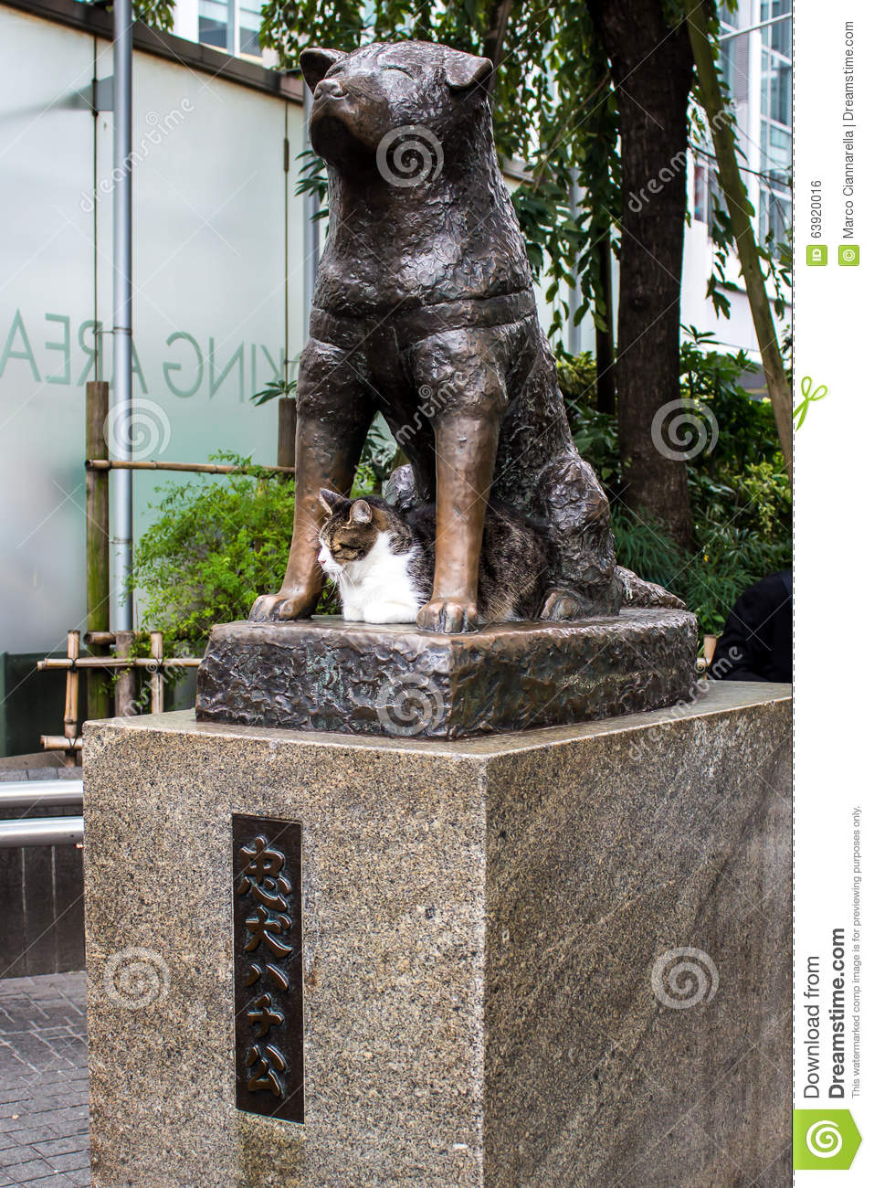 Statue Of Hachiko In Tokyo A Symbol Of Loyalty Stock Photo Image