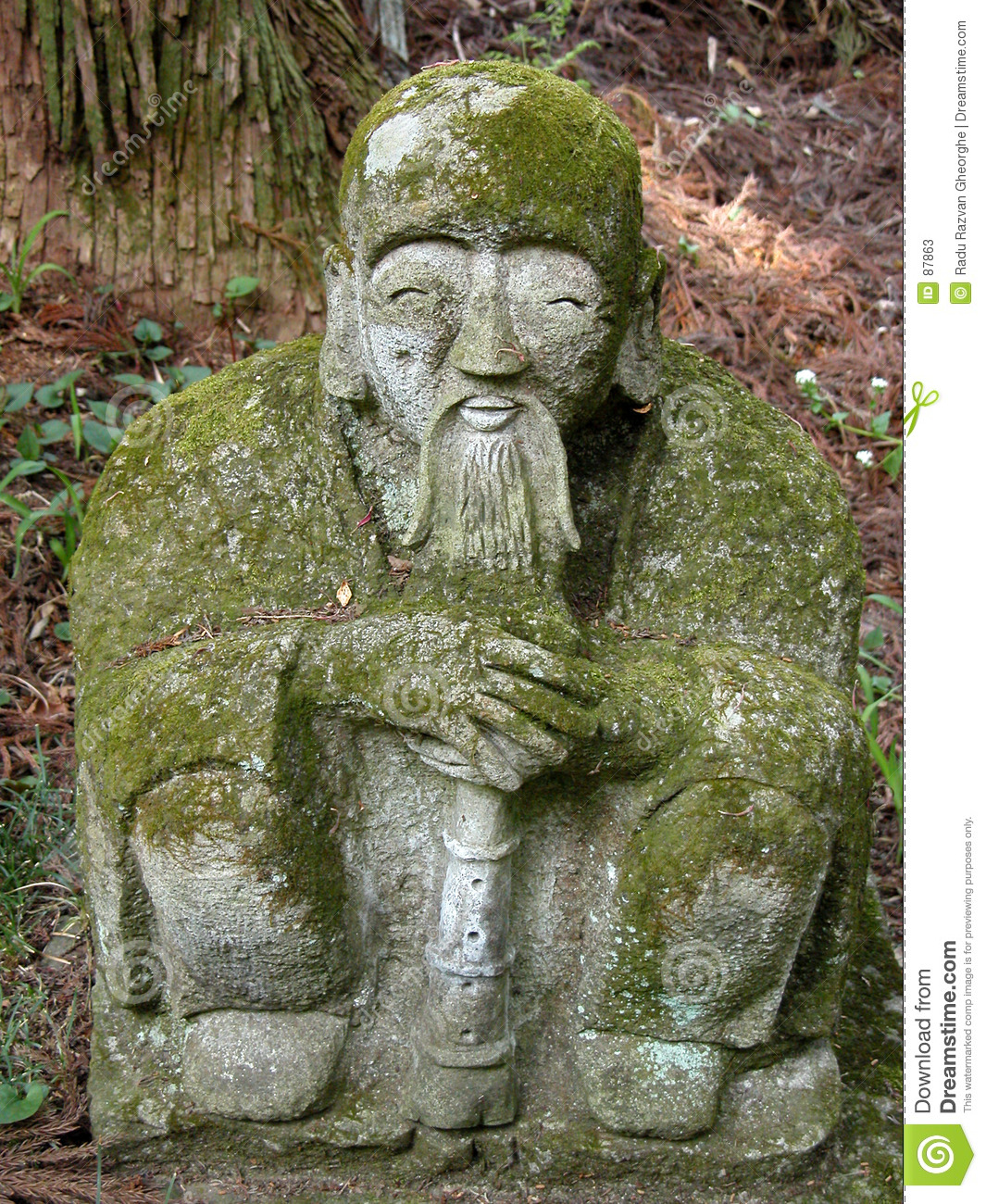 Statue And Moss Stock Photos Image 87863