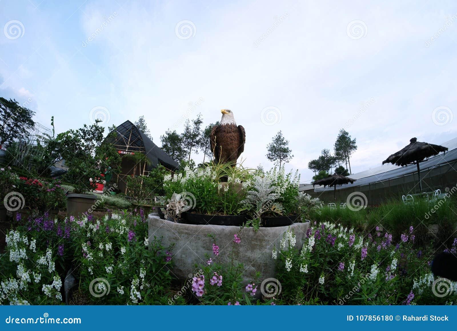 Statue white eagle head with brown fur surrounded by assorted statue white eagle head with brown fur surrounded by assorted flowers in the beautiful garden mightylinksfo
