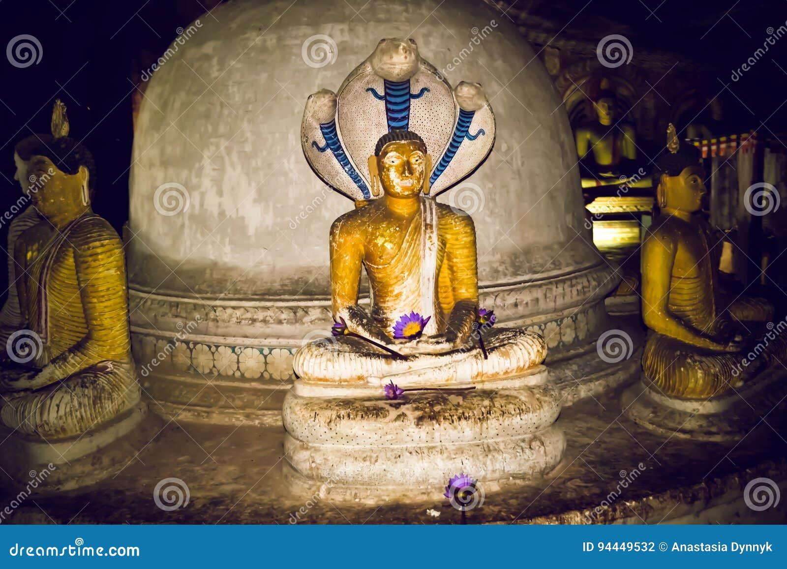 Statues de Bouddha dans le temple de Dambulla Sri Lanka