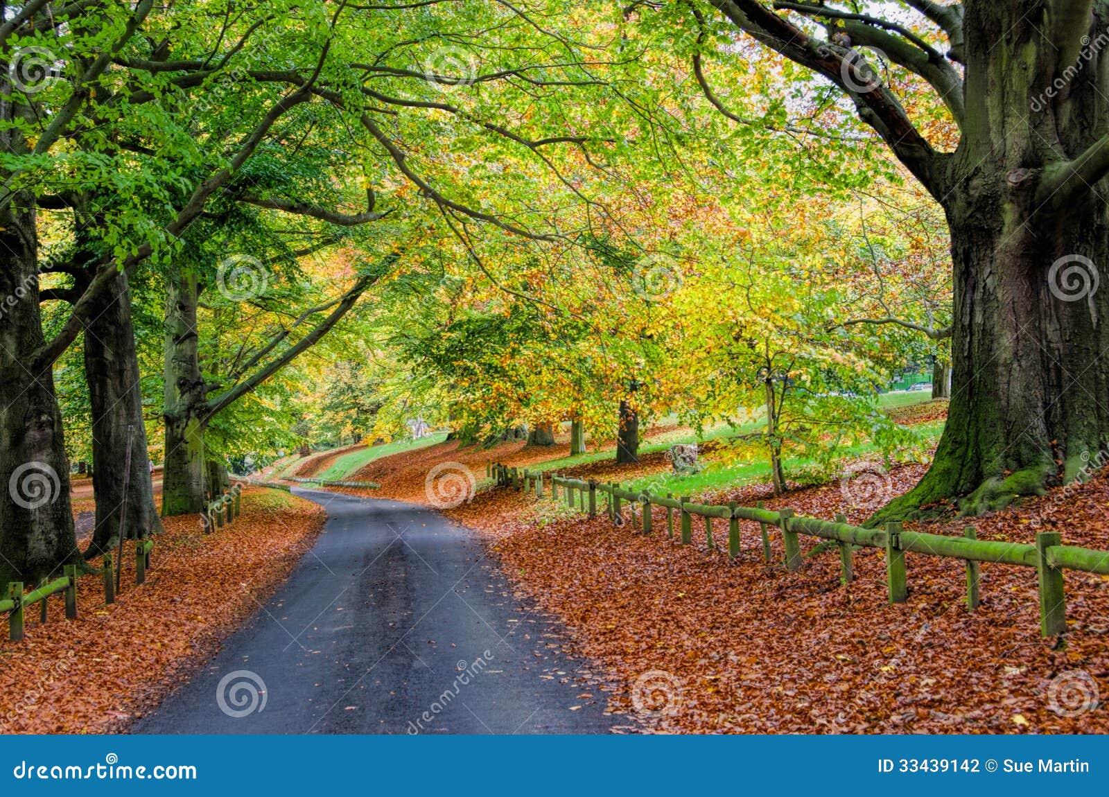 Staubkorn-Park im Herbst