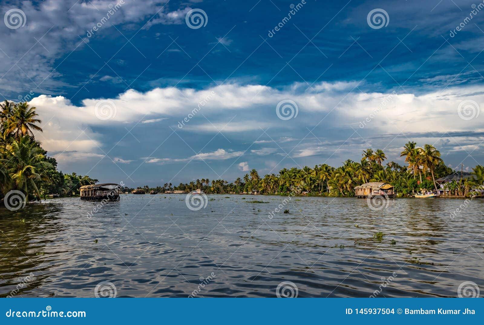 Stauwasseransicht mit Palme des blauen Himmels und