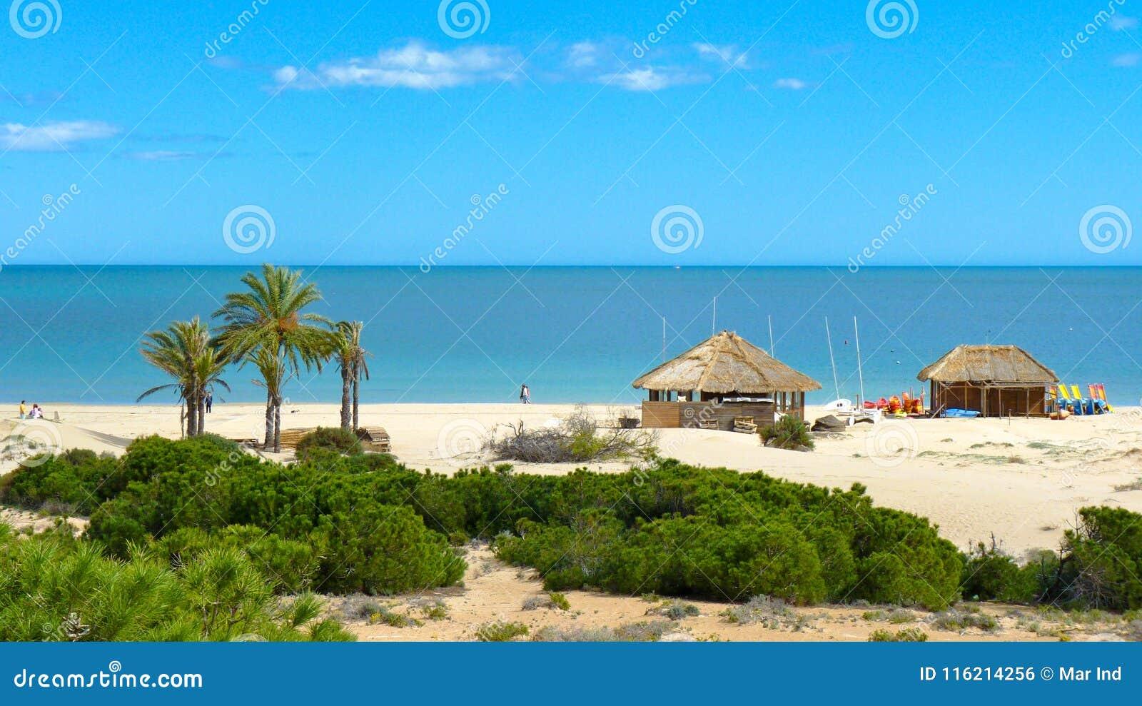 Stazione della spuma sulla spiaggia