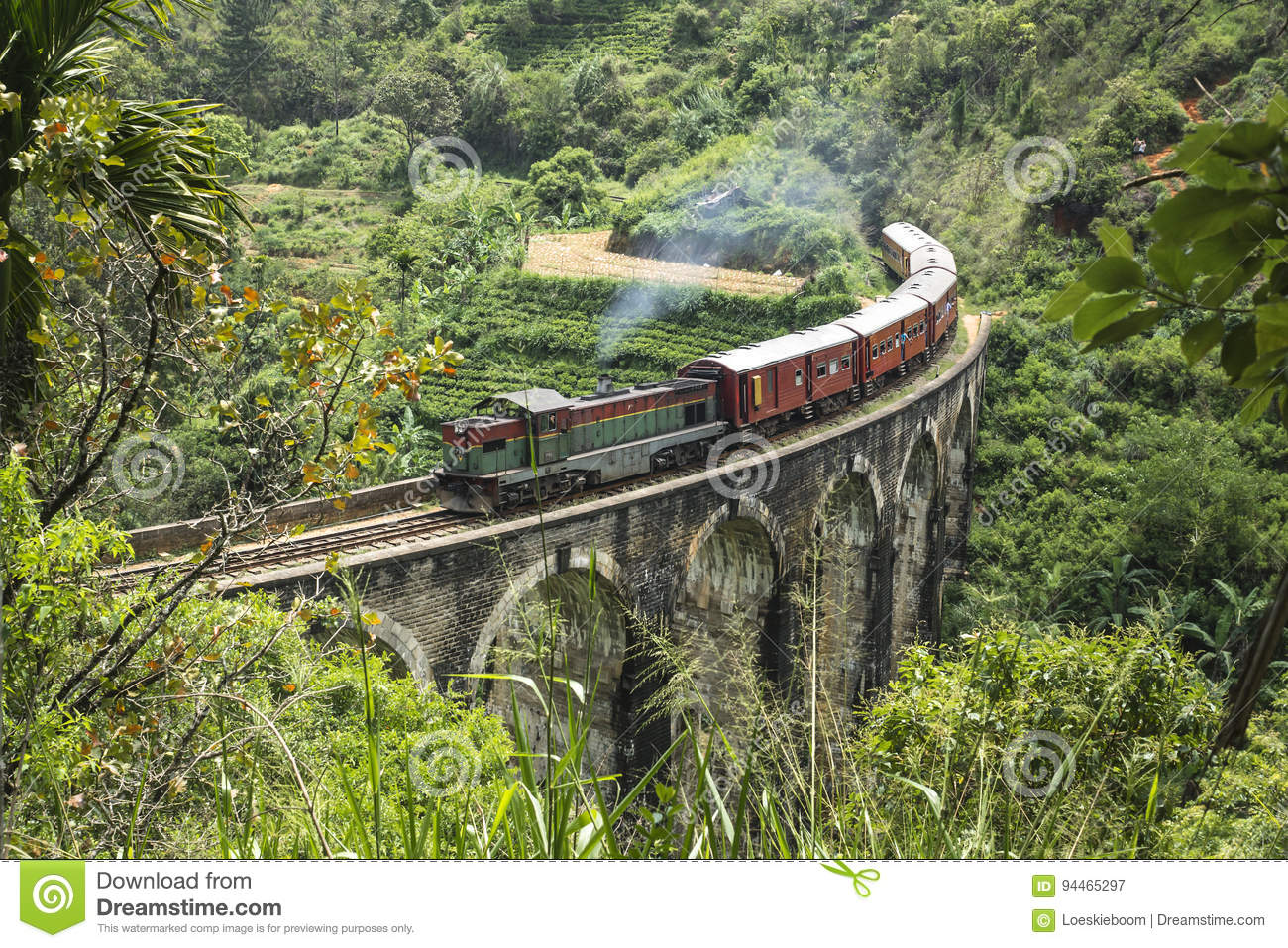 Steam train in the jungle, Ella, Sri Lanka