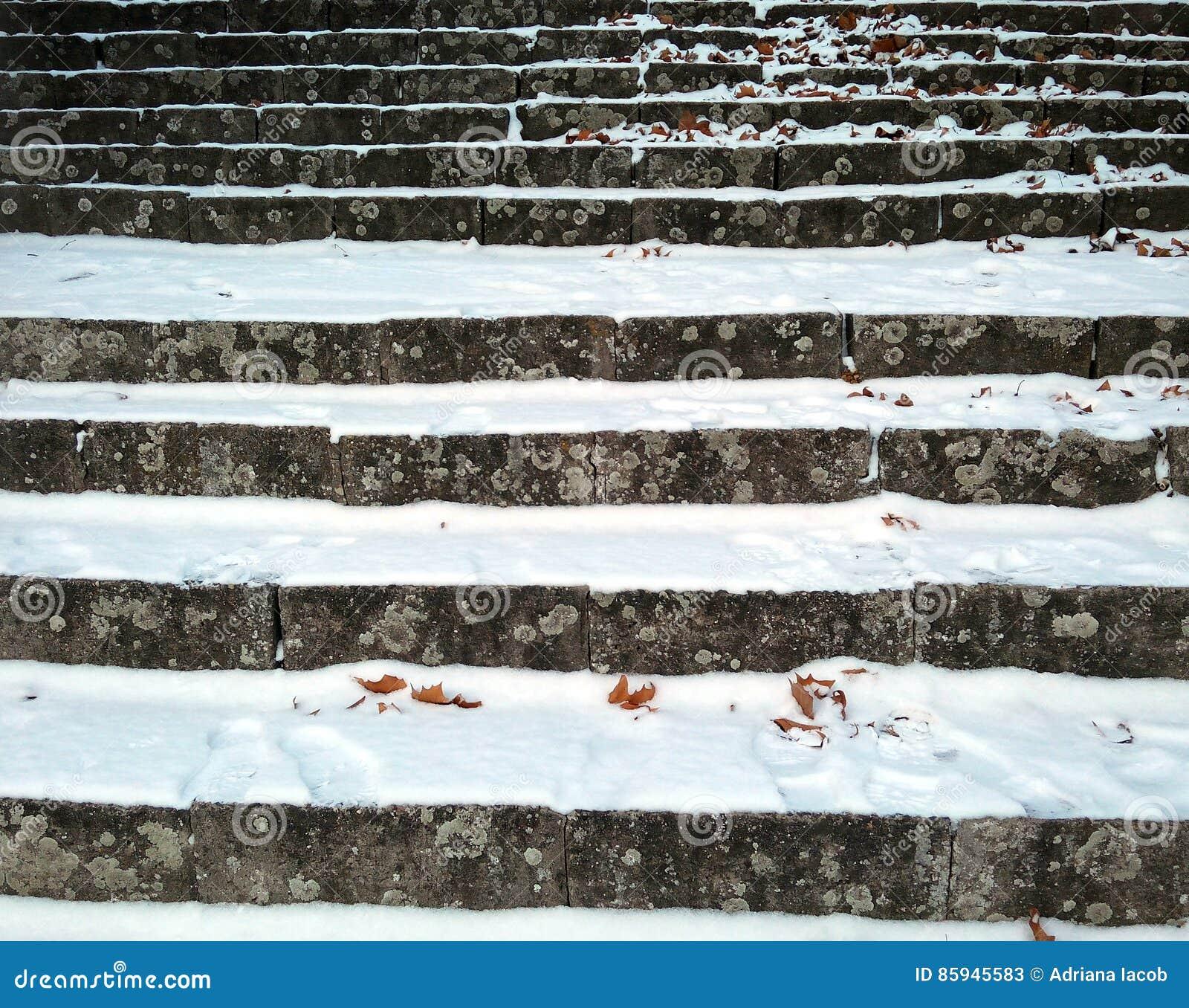 Stedelijk de winterlandschap