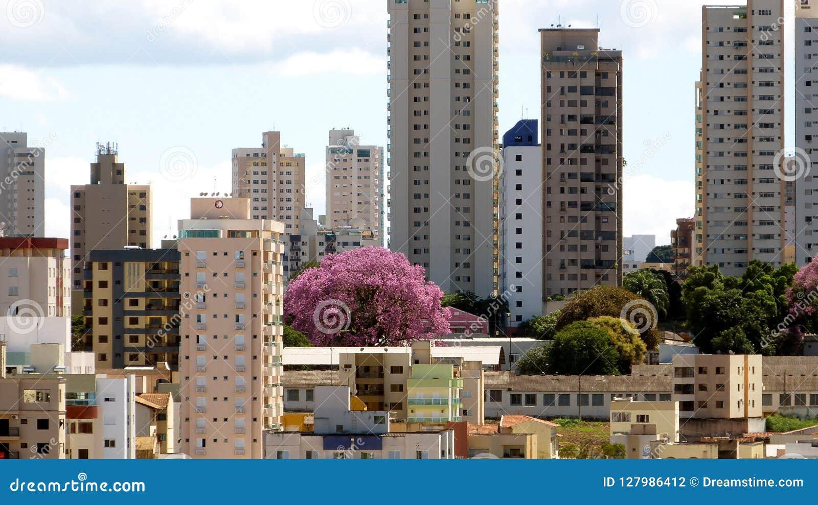 Stedelijk landschap in Uberlandia, Brazilië