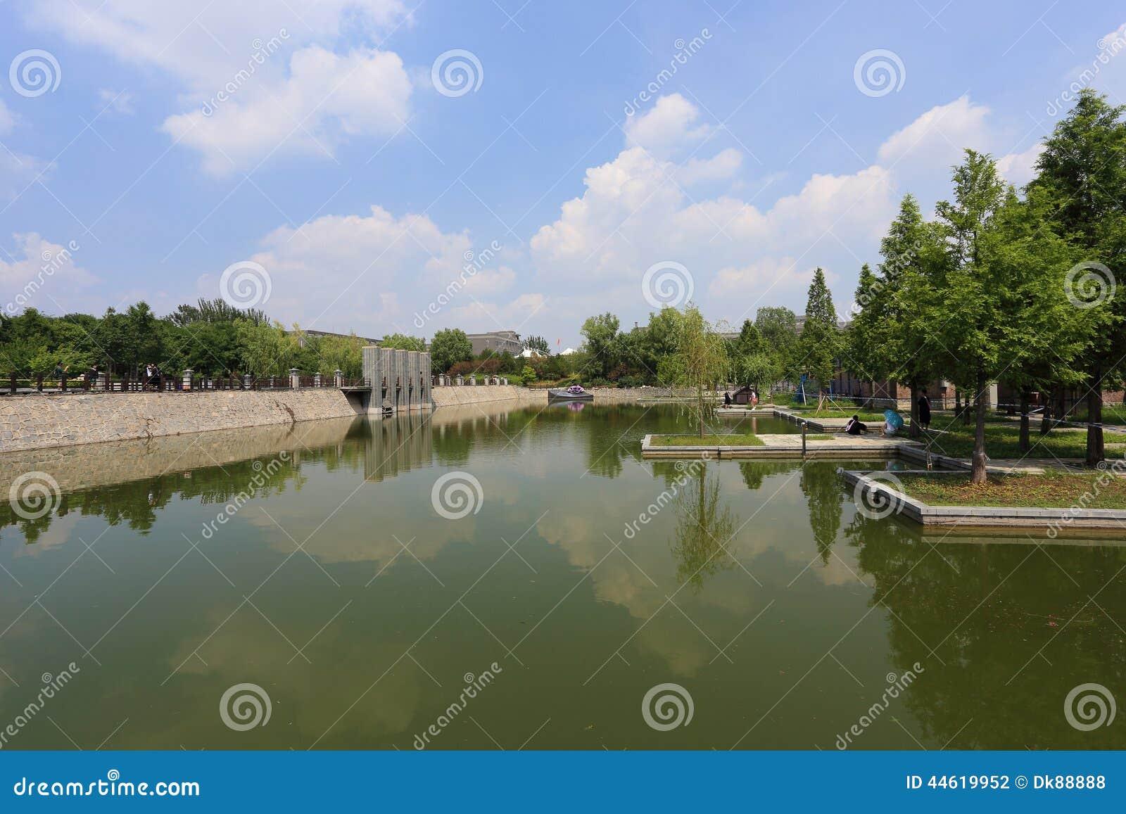 Stedelijk moerasland