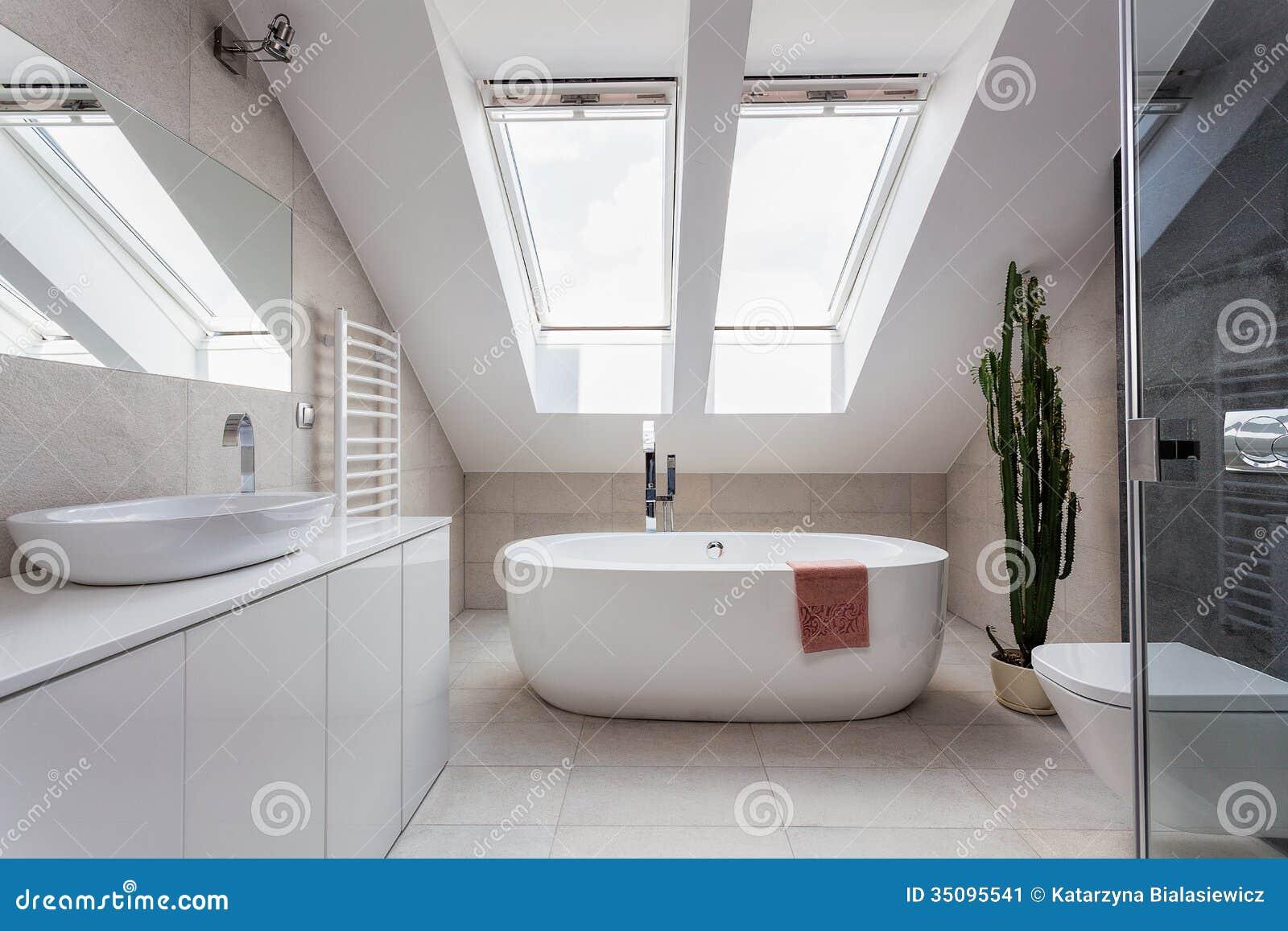 Het mooie grijze nieuwe binnenland van de luxe moderne badkamers ...