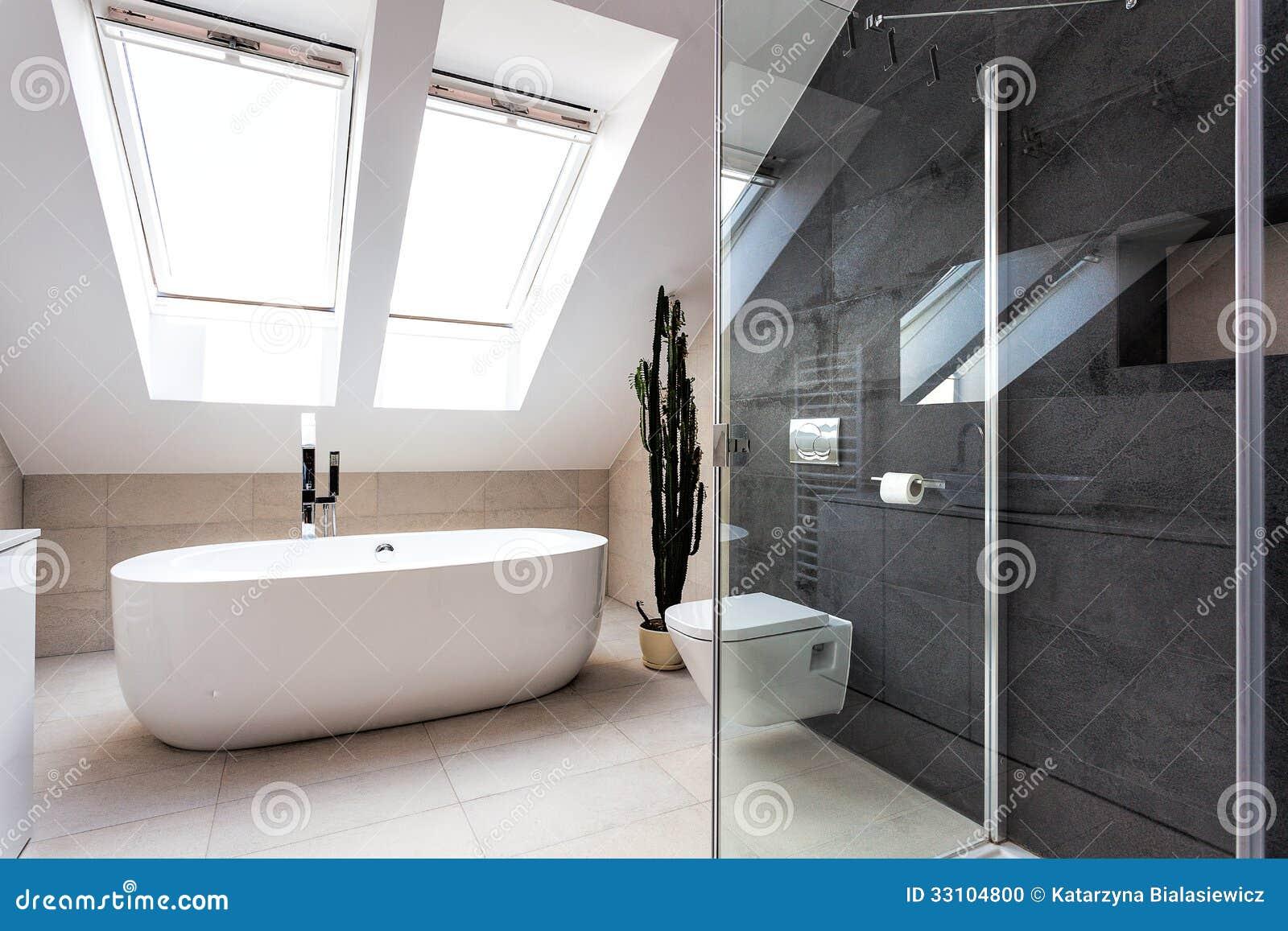 Stedelijke flat douche en bad stock foto afbeelding bestaande