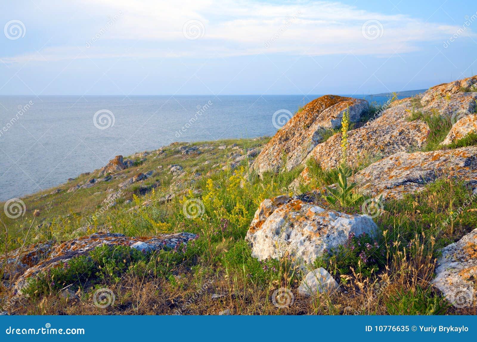 Steenachtige de zomerkustlijn