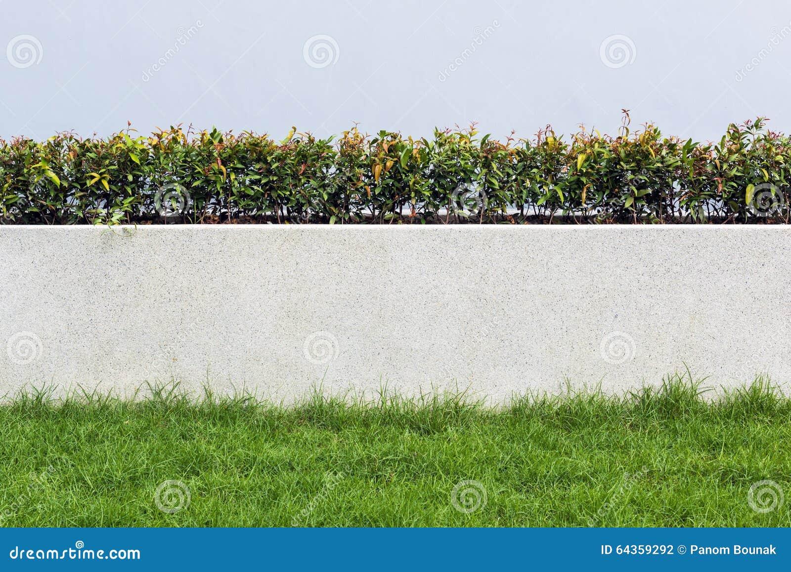 Steenmuur en flora met gras in het ontwerp van de tuindecoratie
