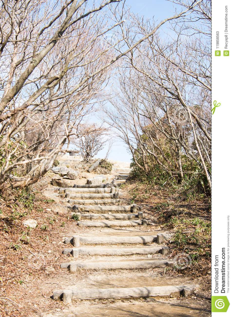 Steep stairs stock image  Image of penol, pathway, street