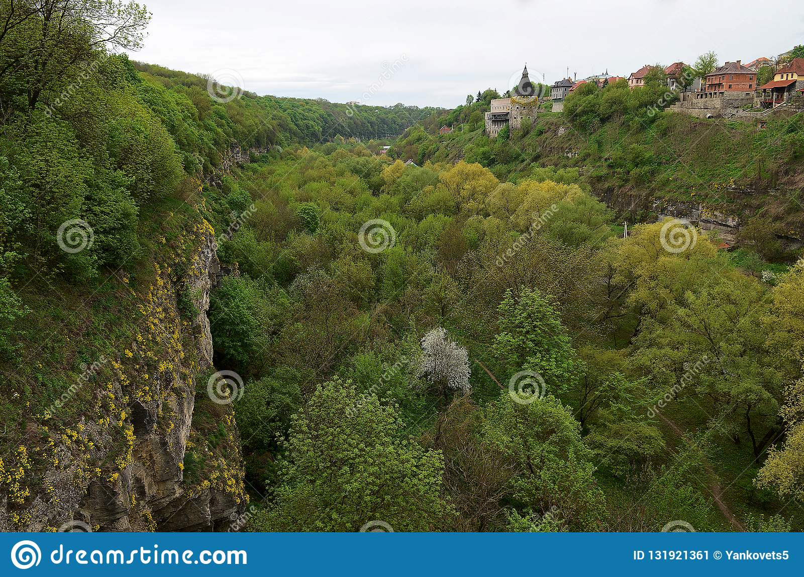 The steep stone walls of the old fortress are covered with yellow flowers and green trees against the background of the