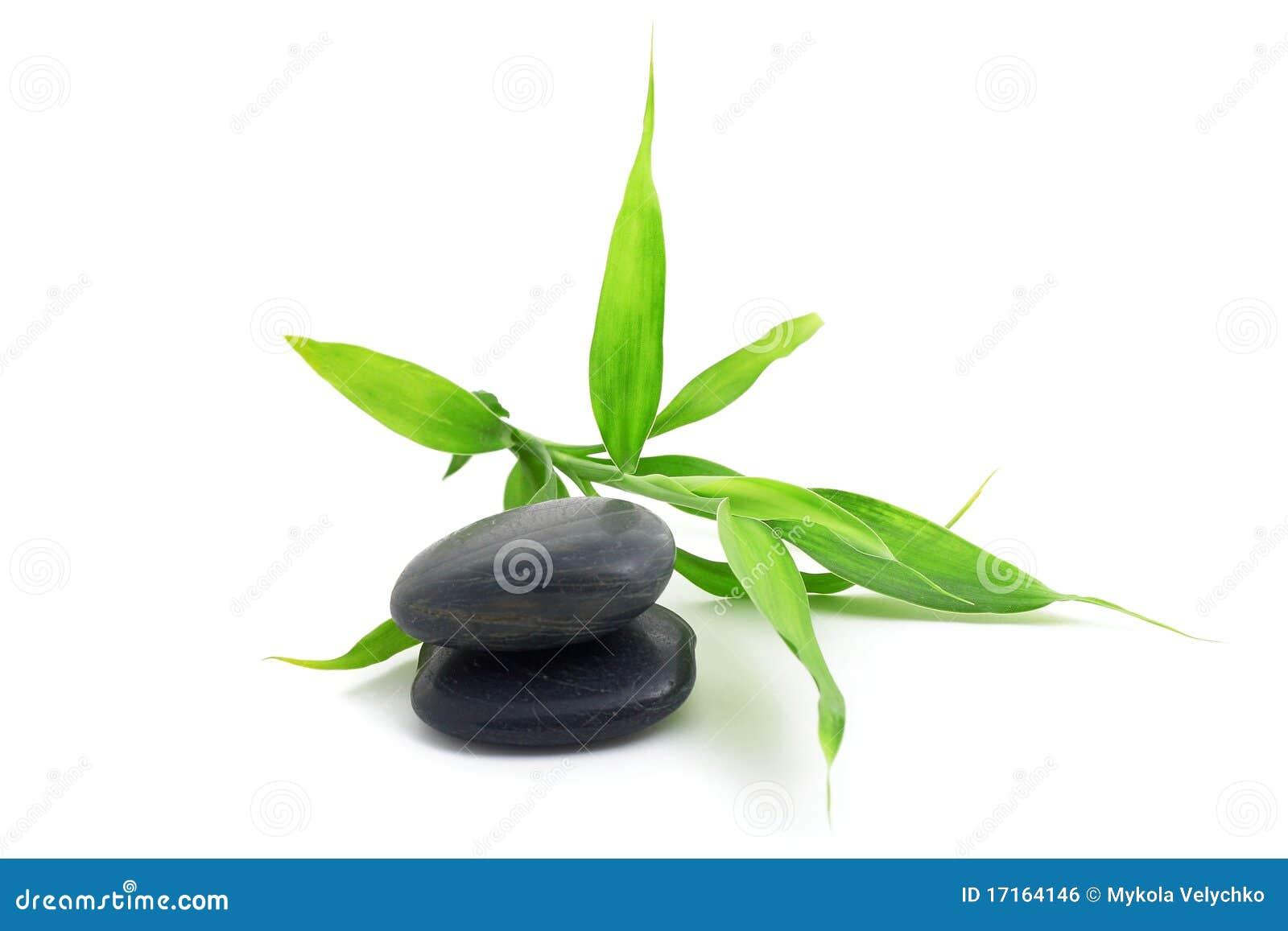 Steine Mit Bambus Stockfoto Bild Von Abschluss Stein 17164146