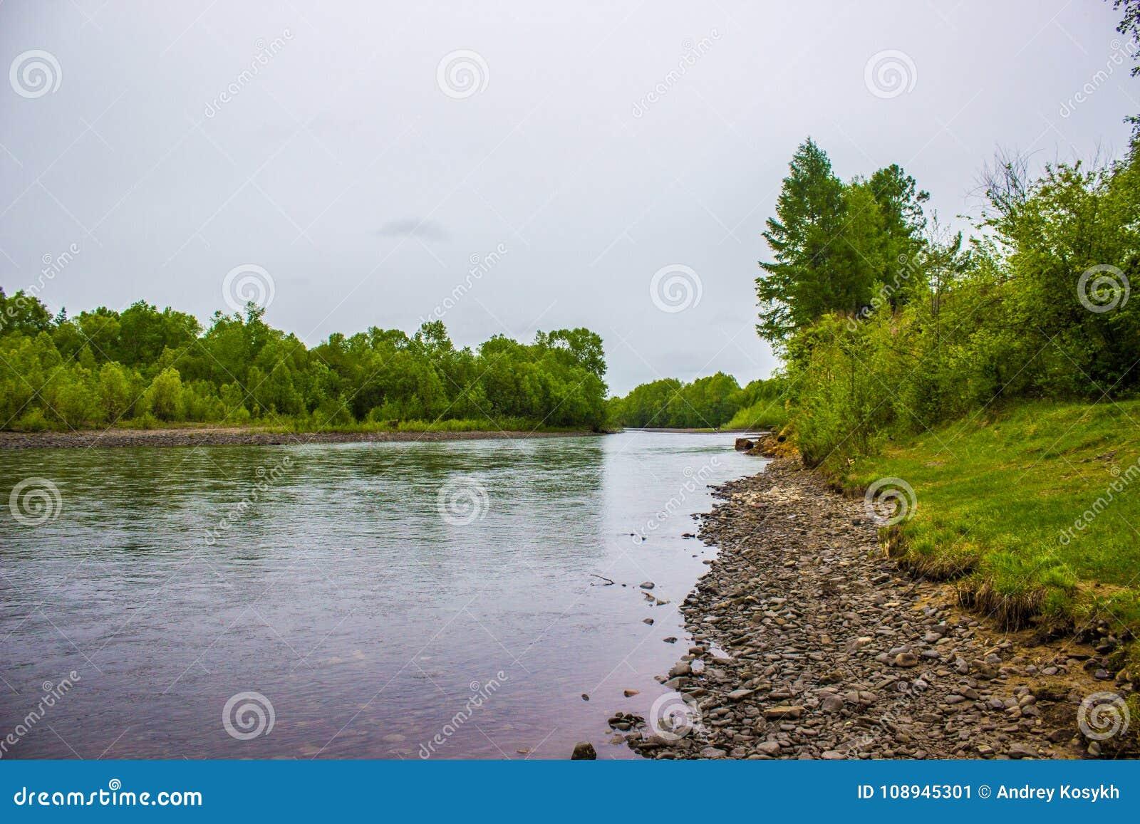 Steinküste von klarem Fluss