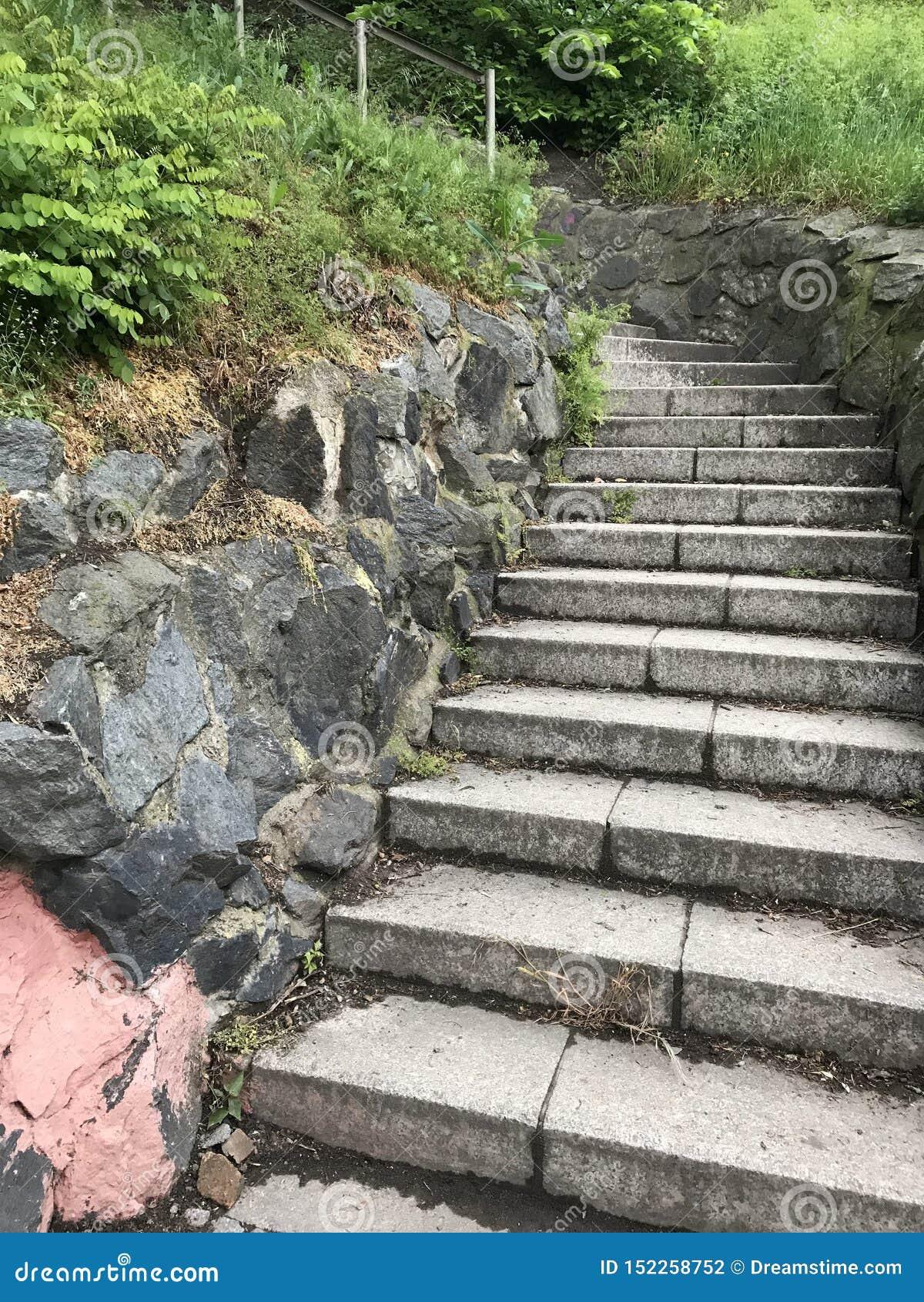 Steintreppe im Garten
