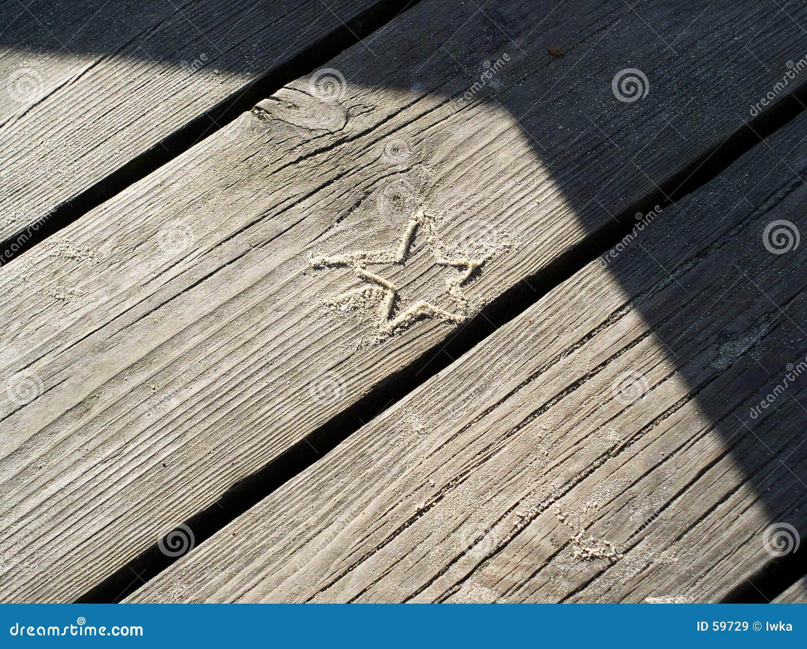 Stella della sabbia
