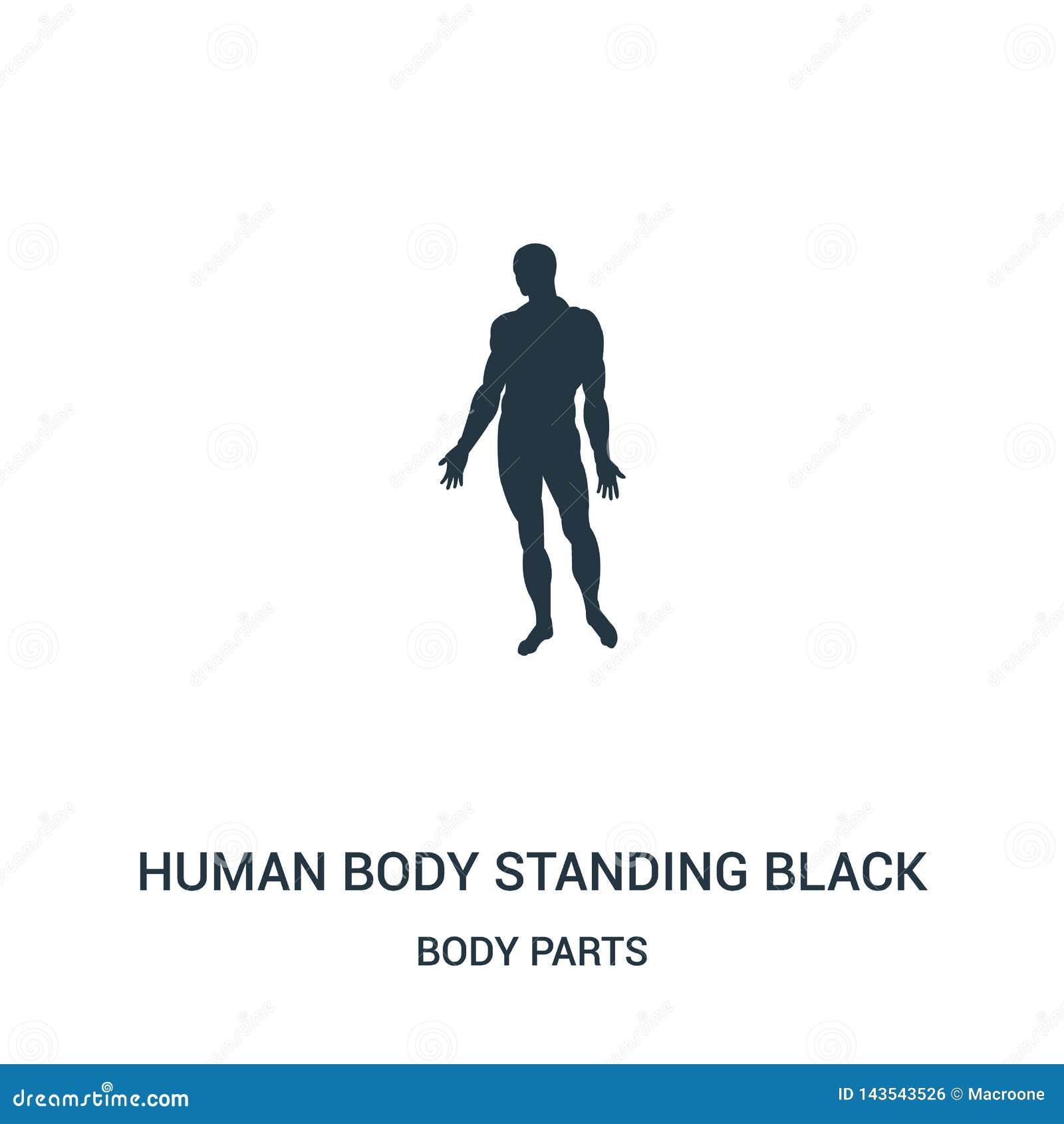 Stellungsschwarzschattenbild-Ikonenvektor des menschlichen Körpers von der Körperteilsammlung Dünne Linie Stellungsschwarzschatte