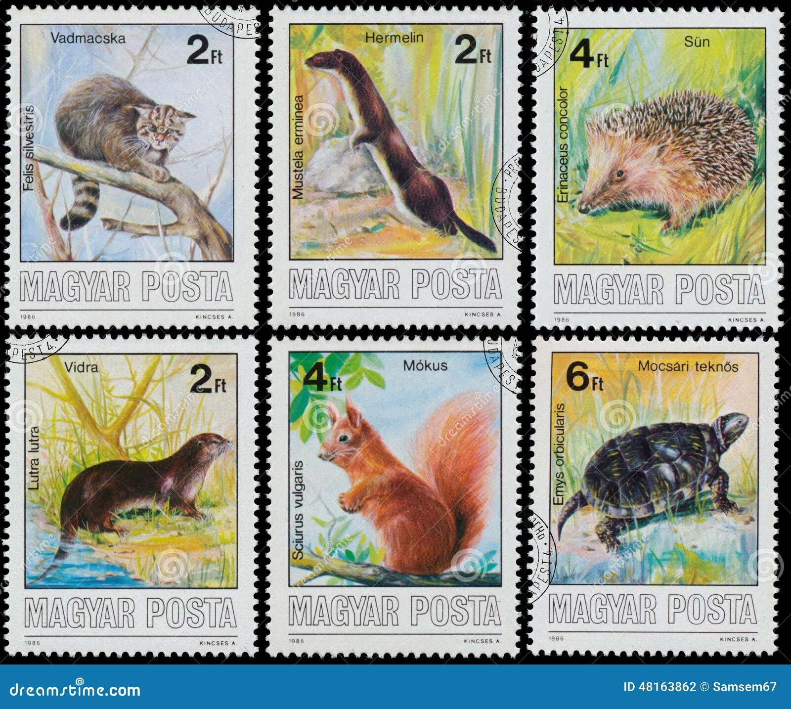 Stempel gedruckt in geschützten Tieren Ungarns Show